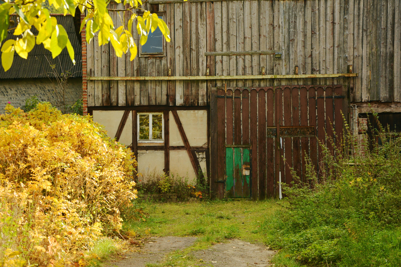 Kostenlose foto : Baum, Holz, Bauernhof, Haus, Blatt, Blume, Gebäude ...