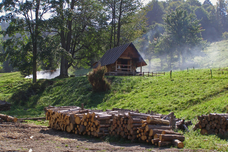 Сельские каникулы в русской деревне #11