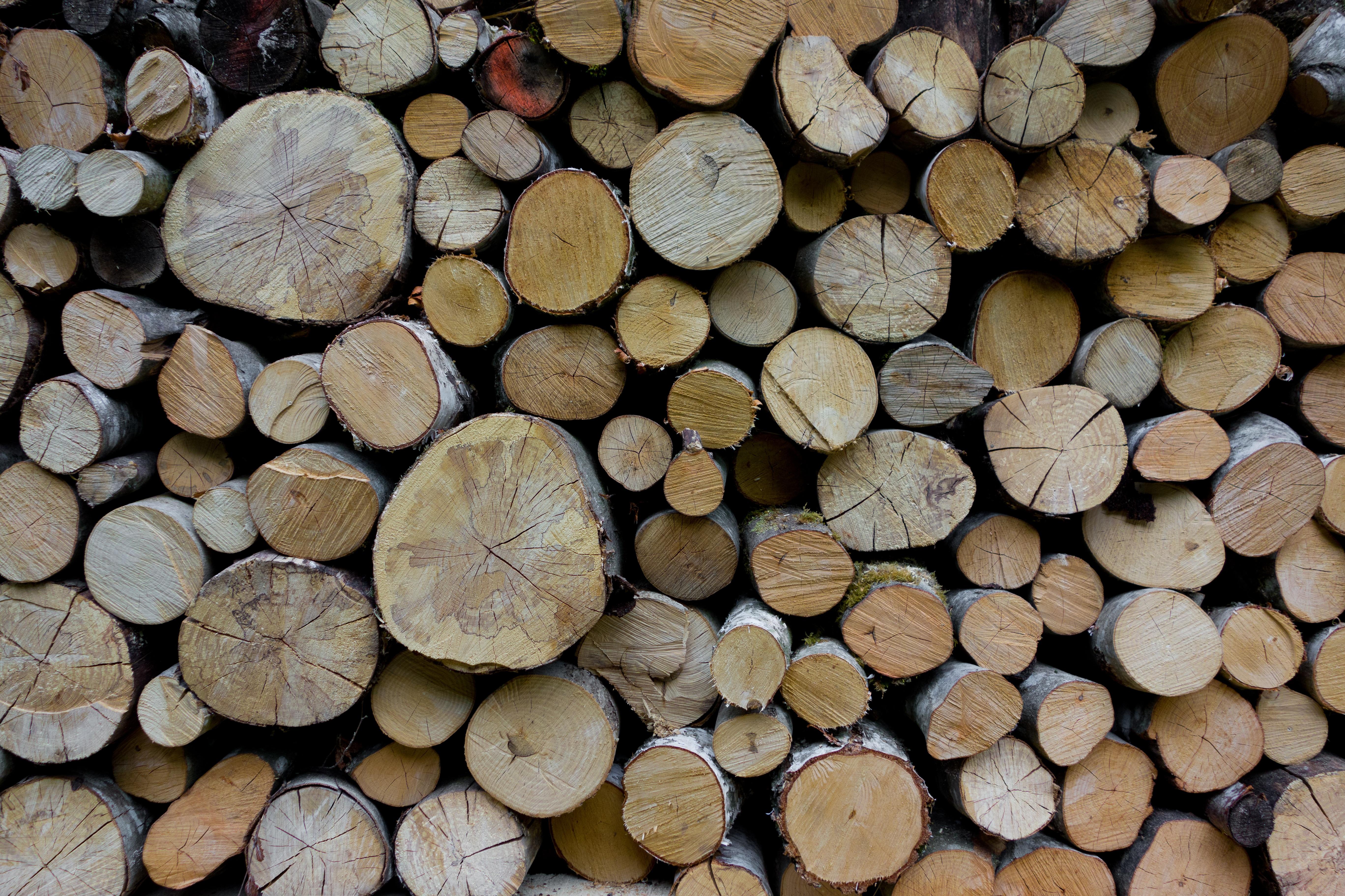 Free images grain trunk log brown soil firewood