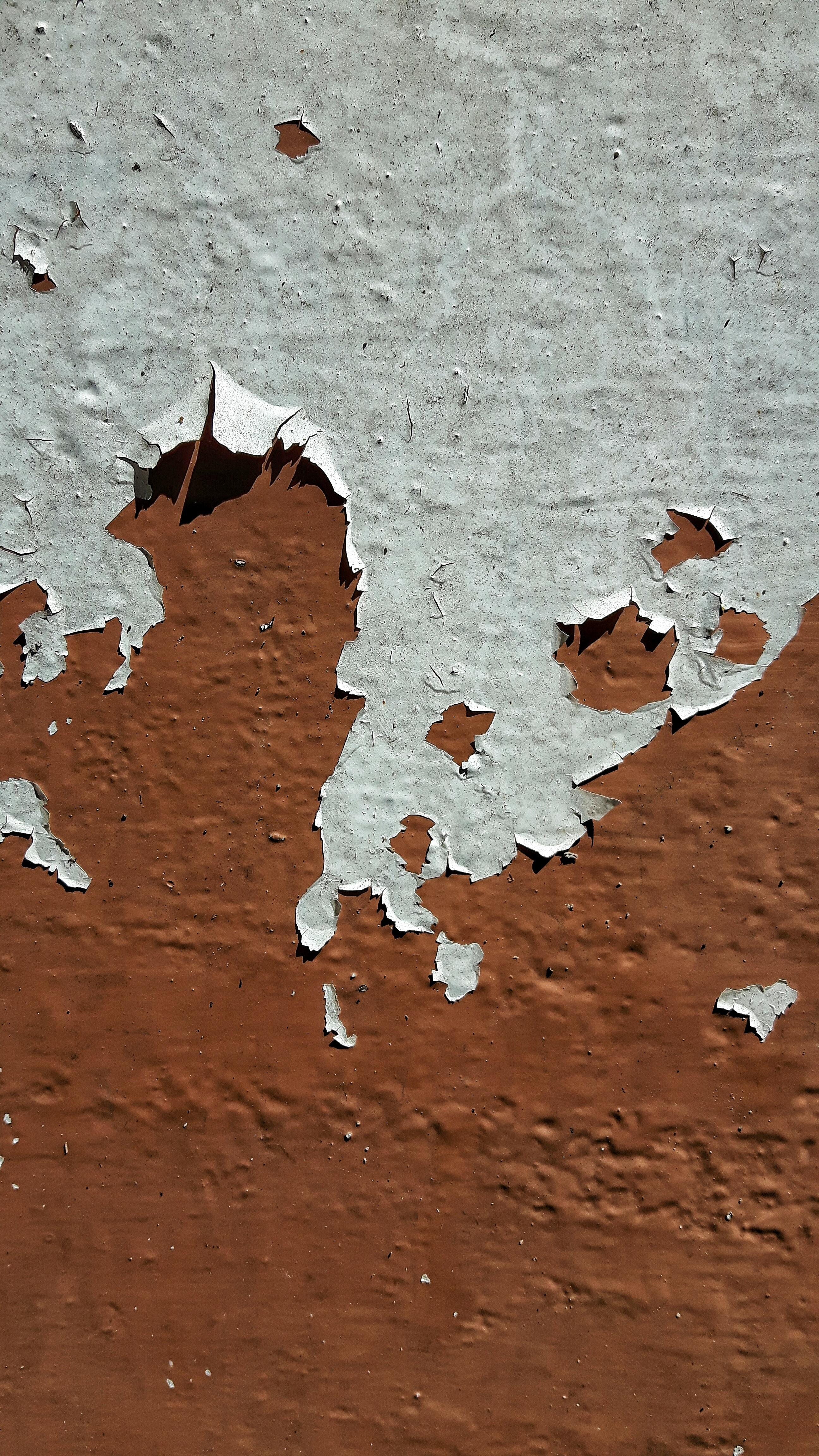 Kostenlose foto : Baum, Holz, Textur, Blatt, Stock, Nummer, Mauer ...