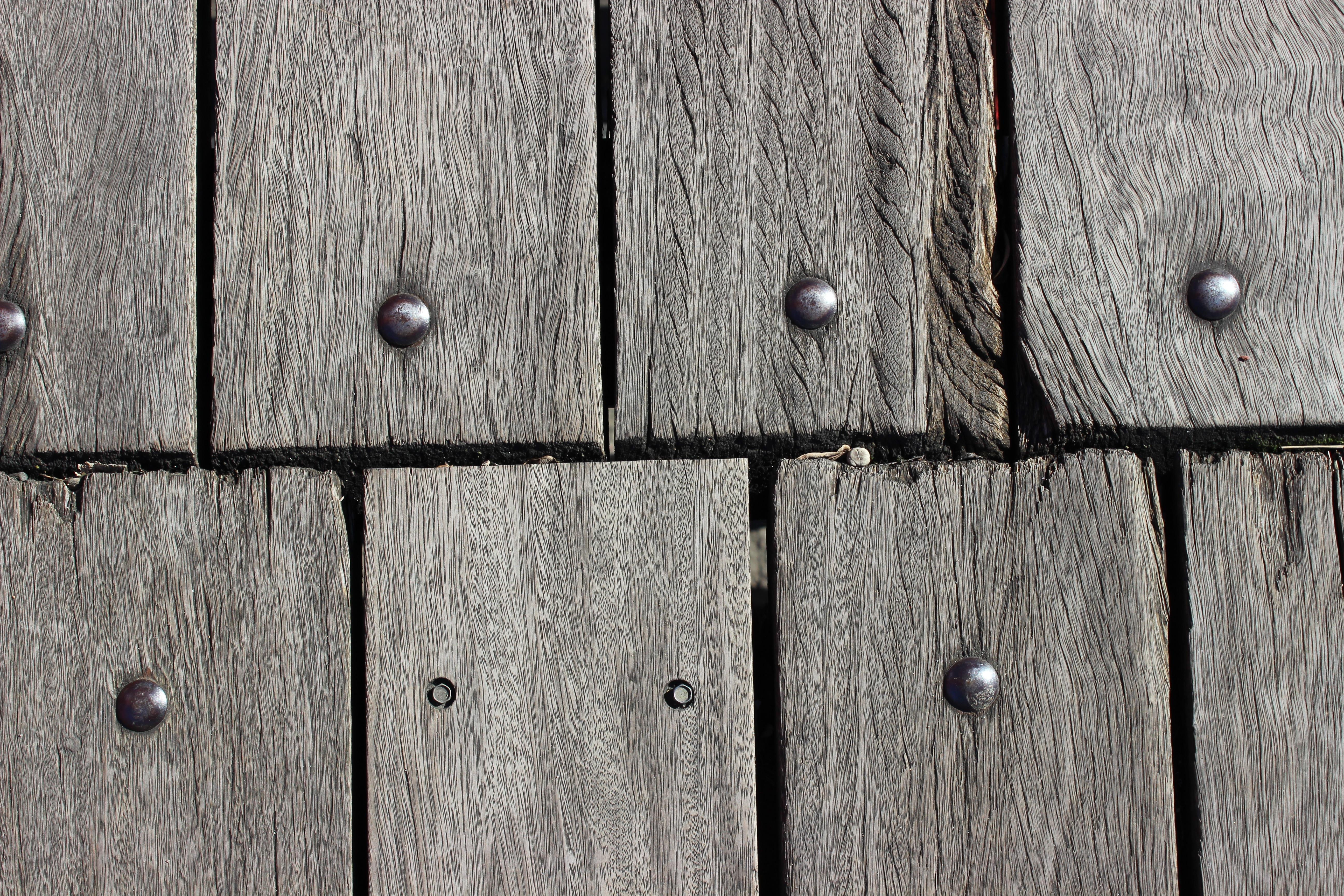 Immagini belle : albero legna struttura tavola parete linea