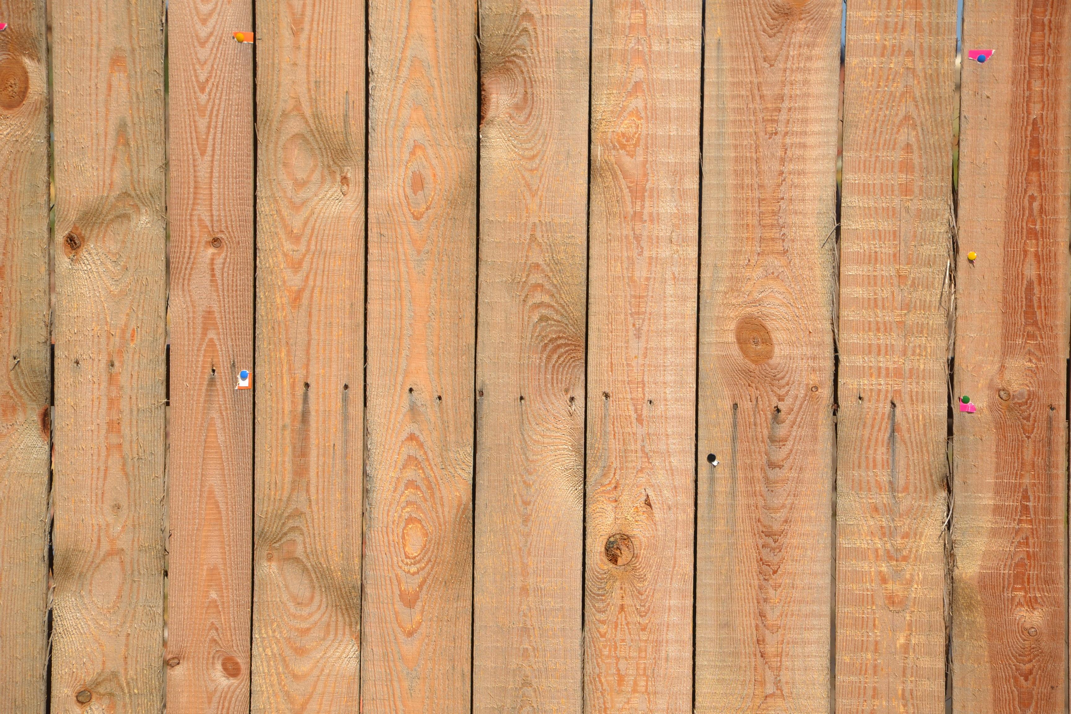 Images Gratuites Arbre Texture Planche Mur Modele