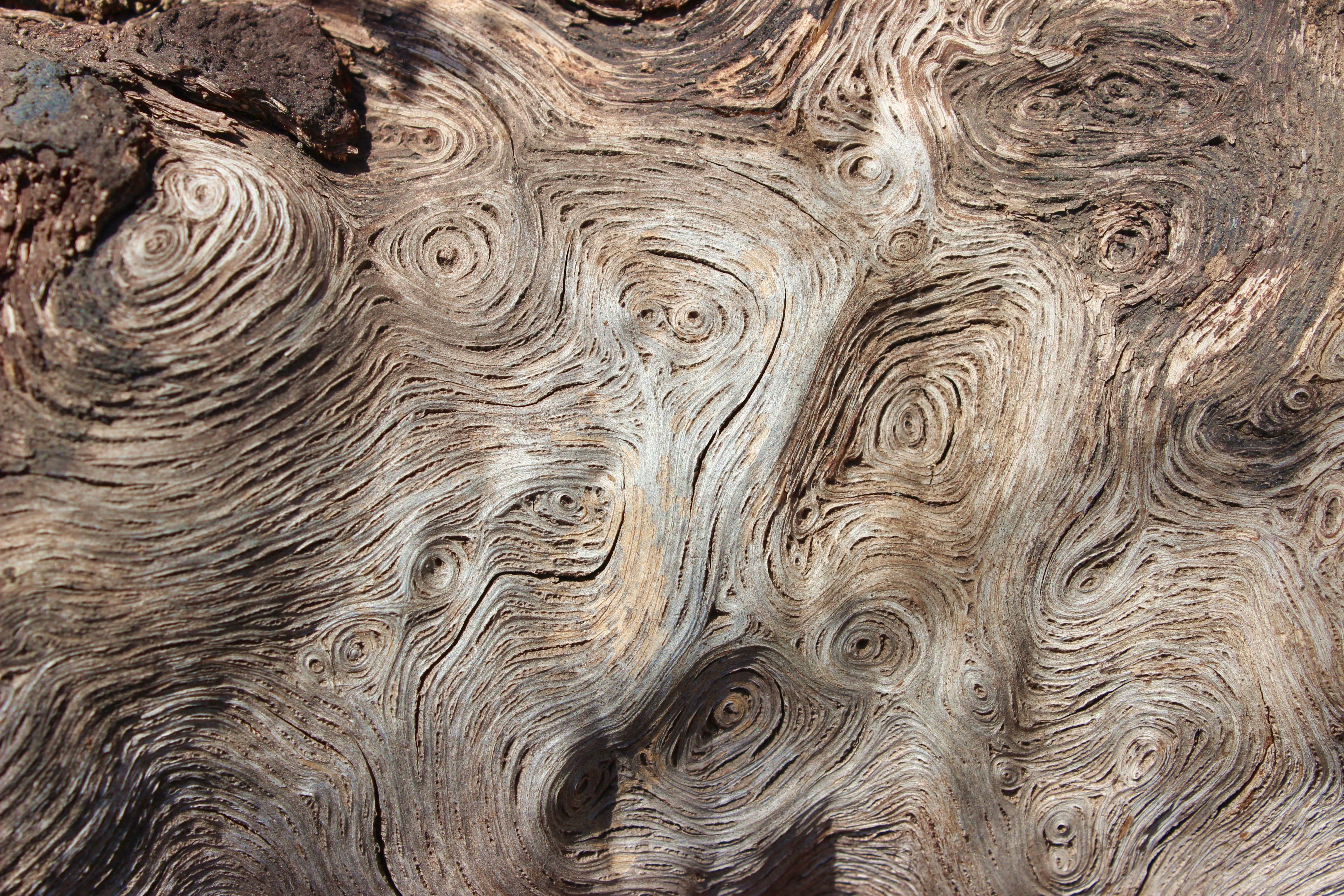 Holz Auf Alt Trimmen