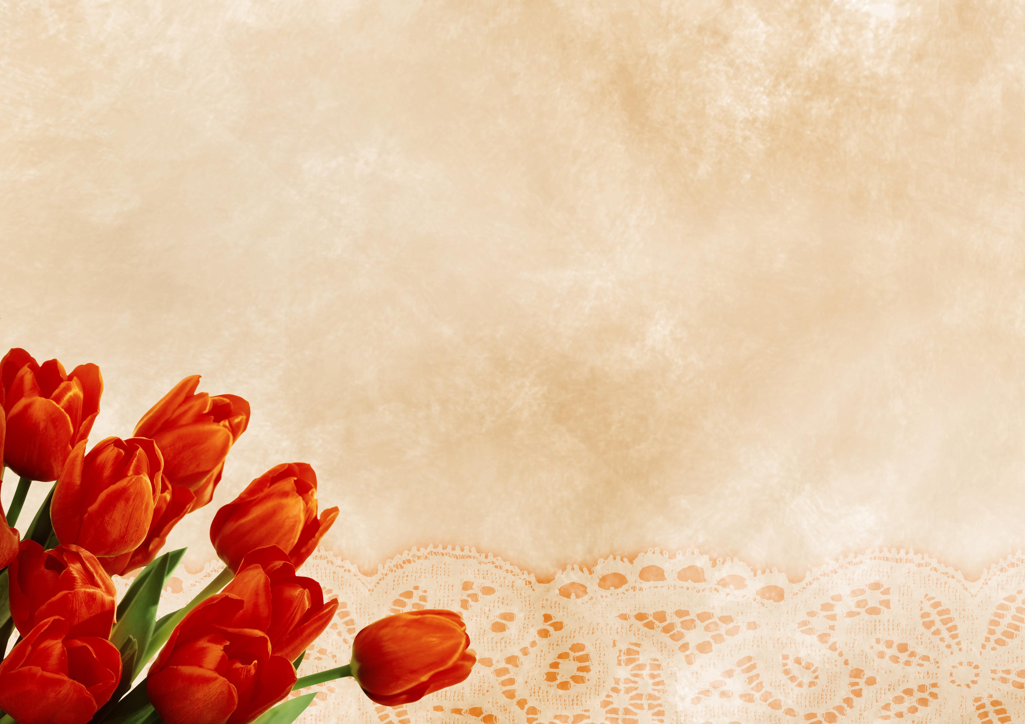 Kostenlose foto : Tulpen, Hintergrund, Muster, Blumen, Blumenstrauß ...