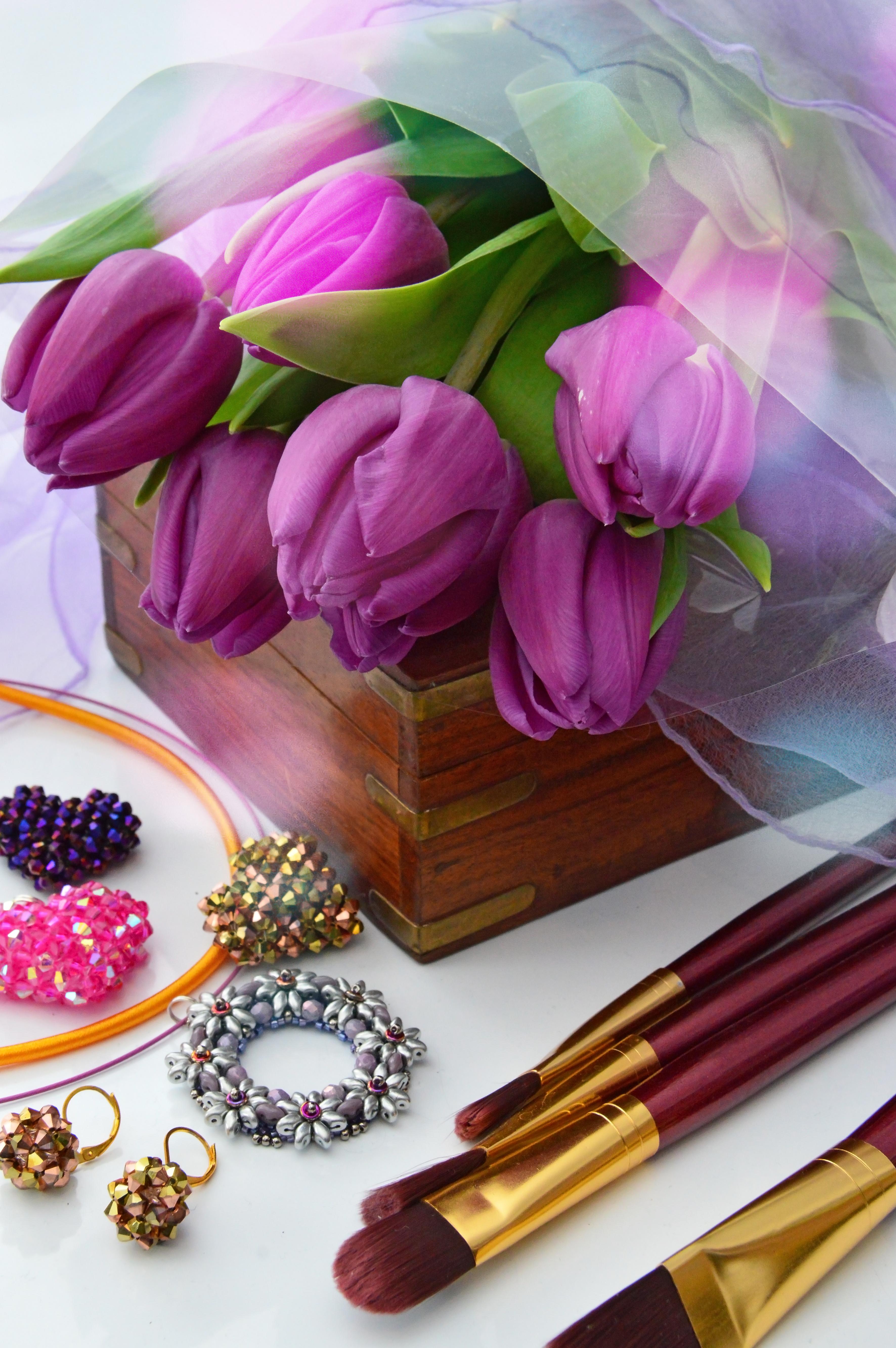 Images Gratuites Tulipes Violet Contexte Fleur La Nature Noir