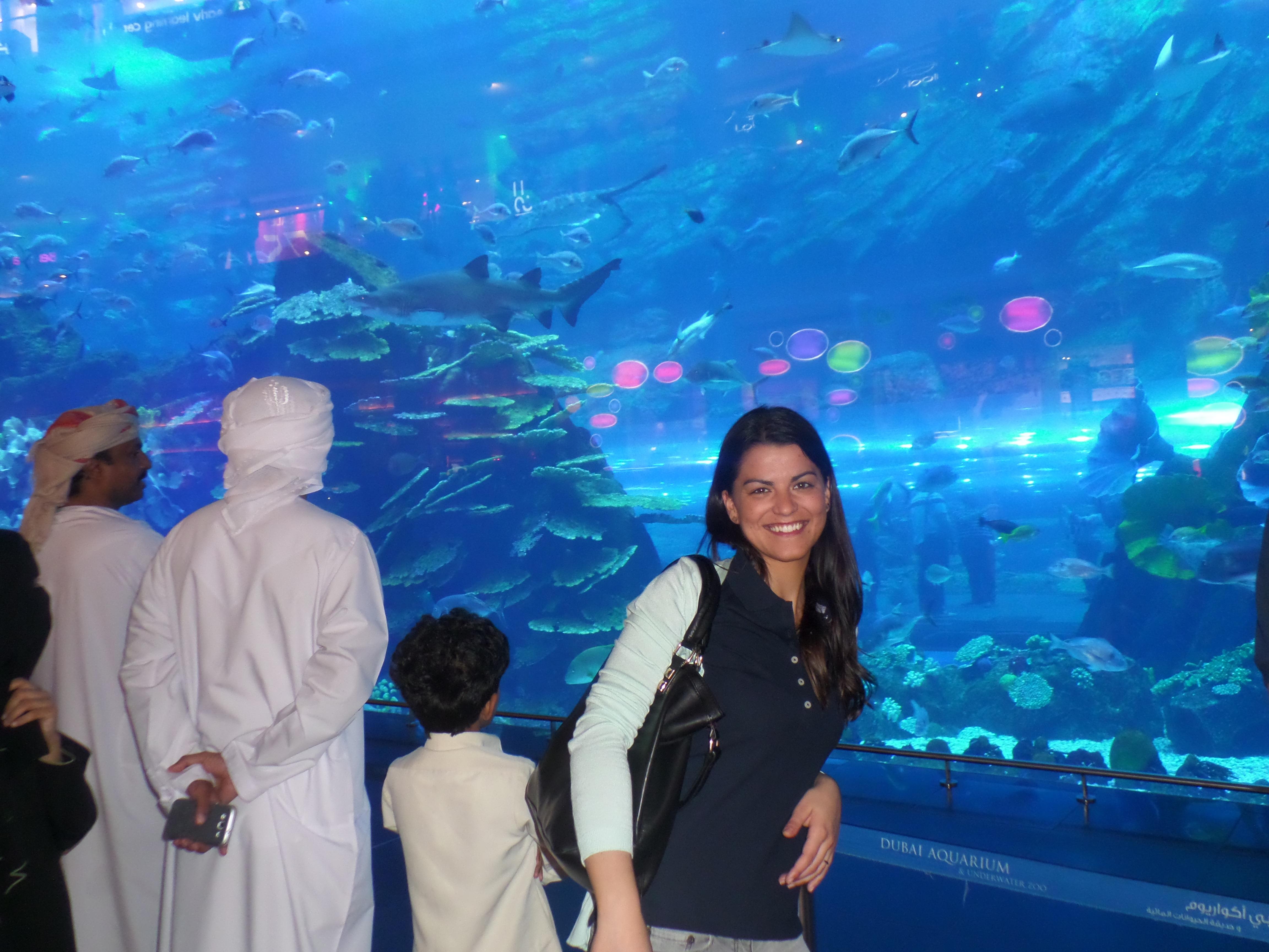 Подводный ночной клуб созвездие детский клуб москва