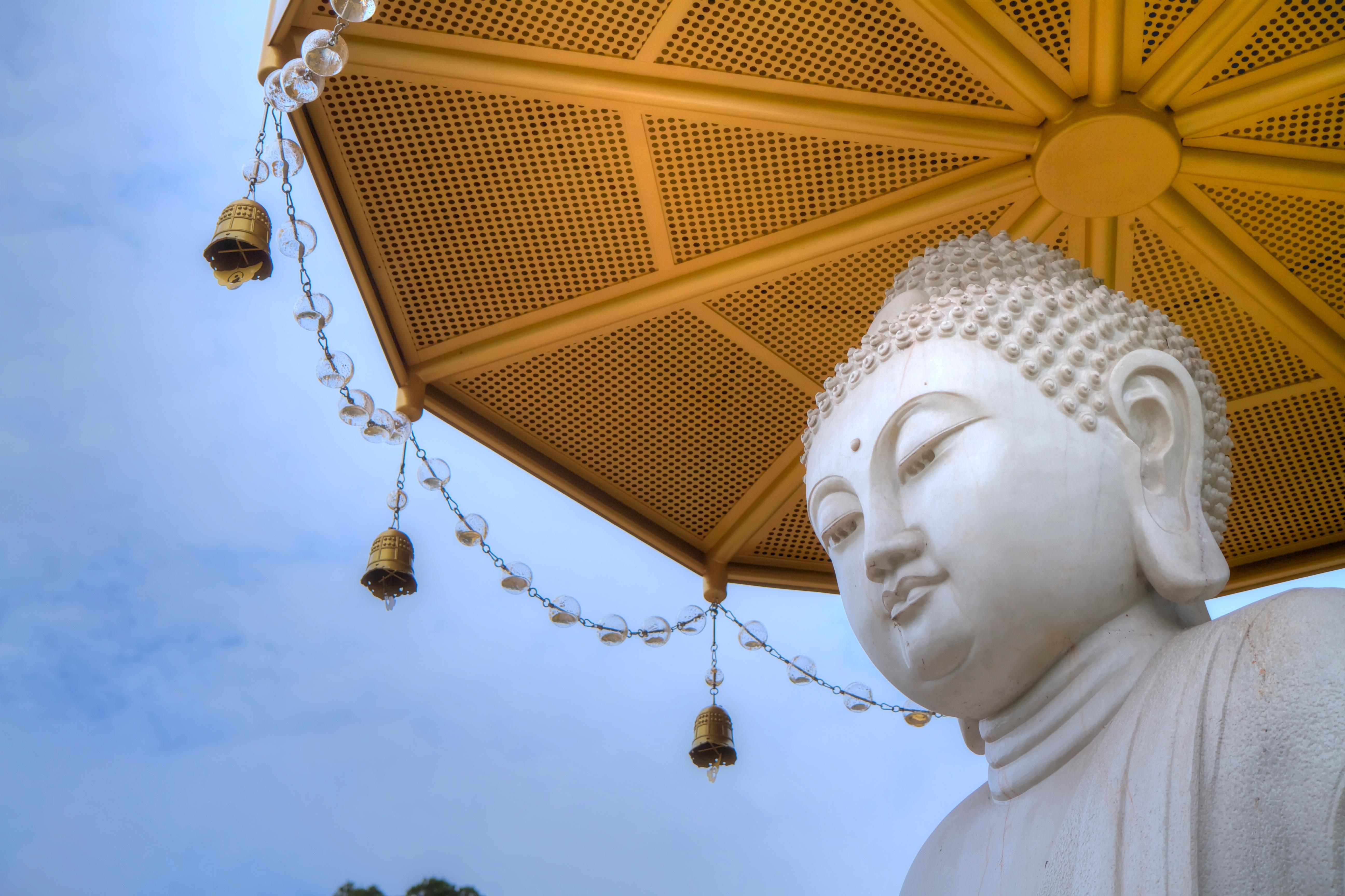 сердце будды фото настоящее время