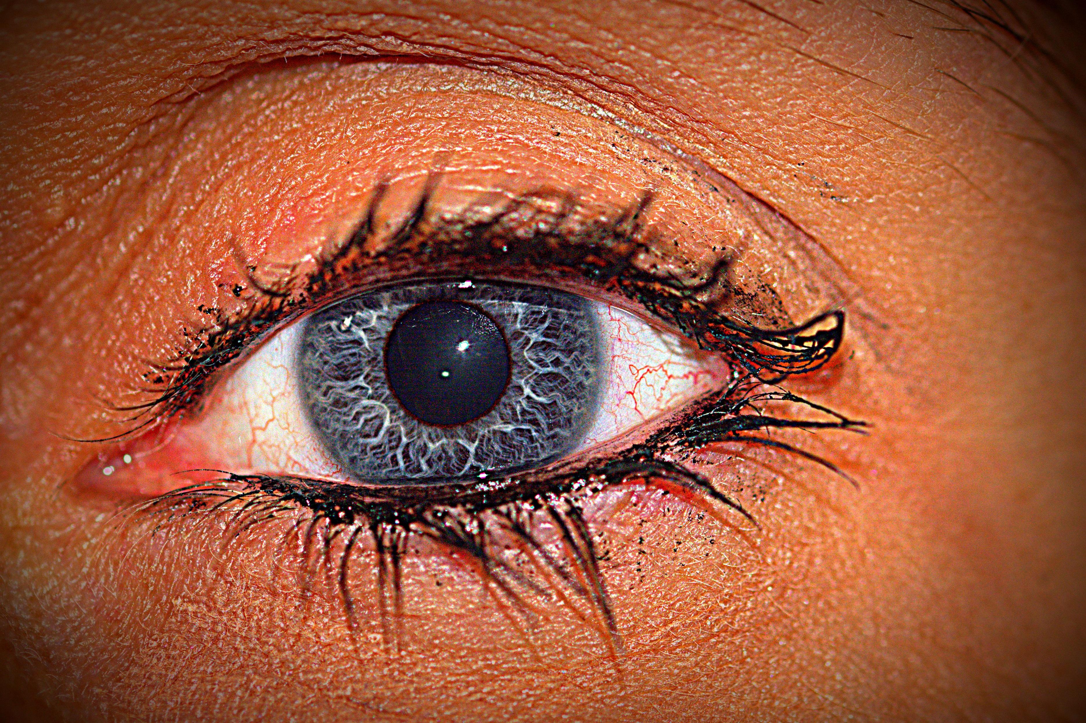 Kostenlose foto : Aussicht, blau, schließen, Lippe, Augenbraue, Mund ...