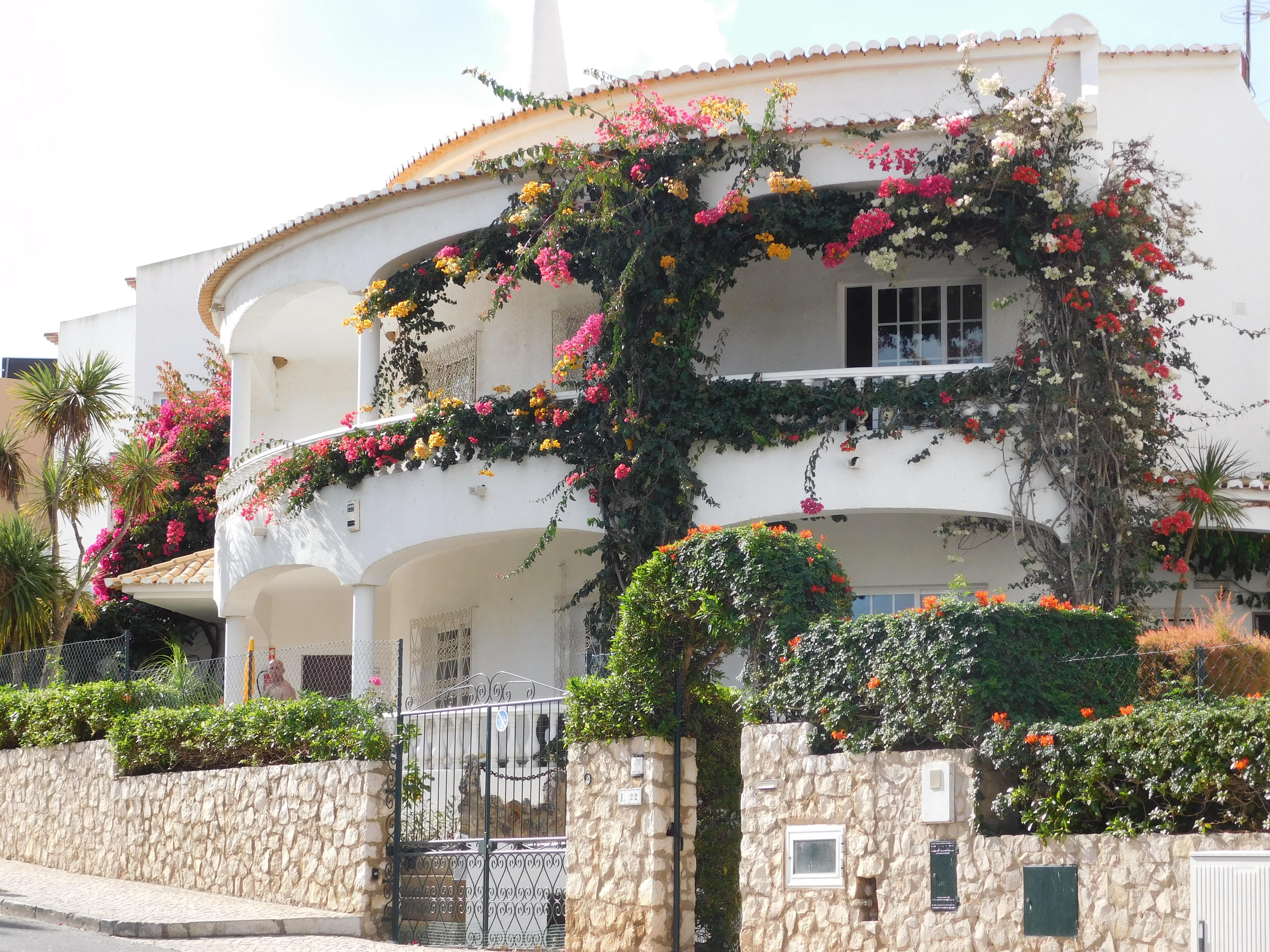 Free Images villa mansion village facade property flowers