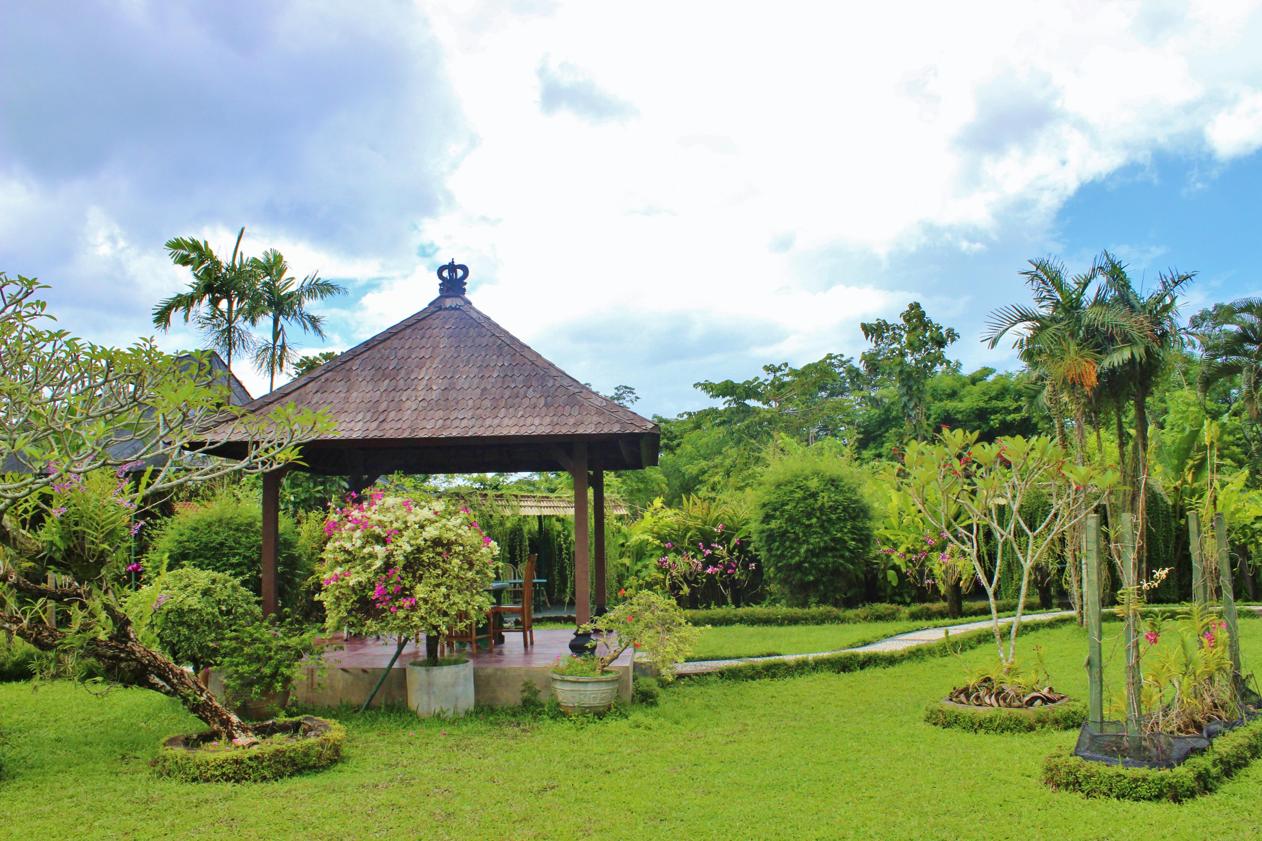 Free Images : village, tropical, island, flora, resort, plantation ...