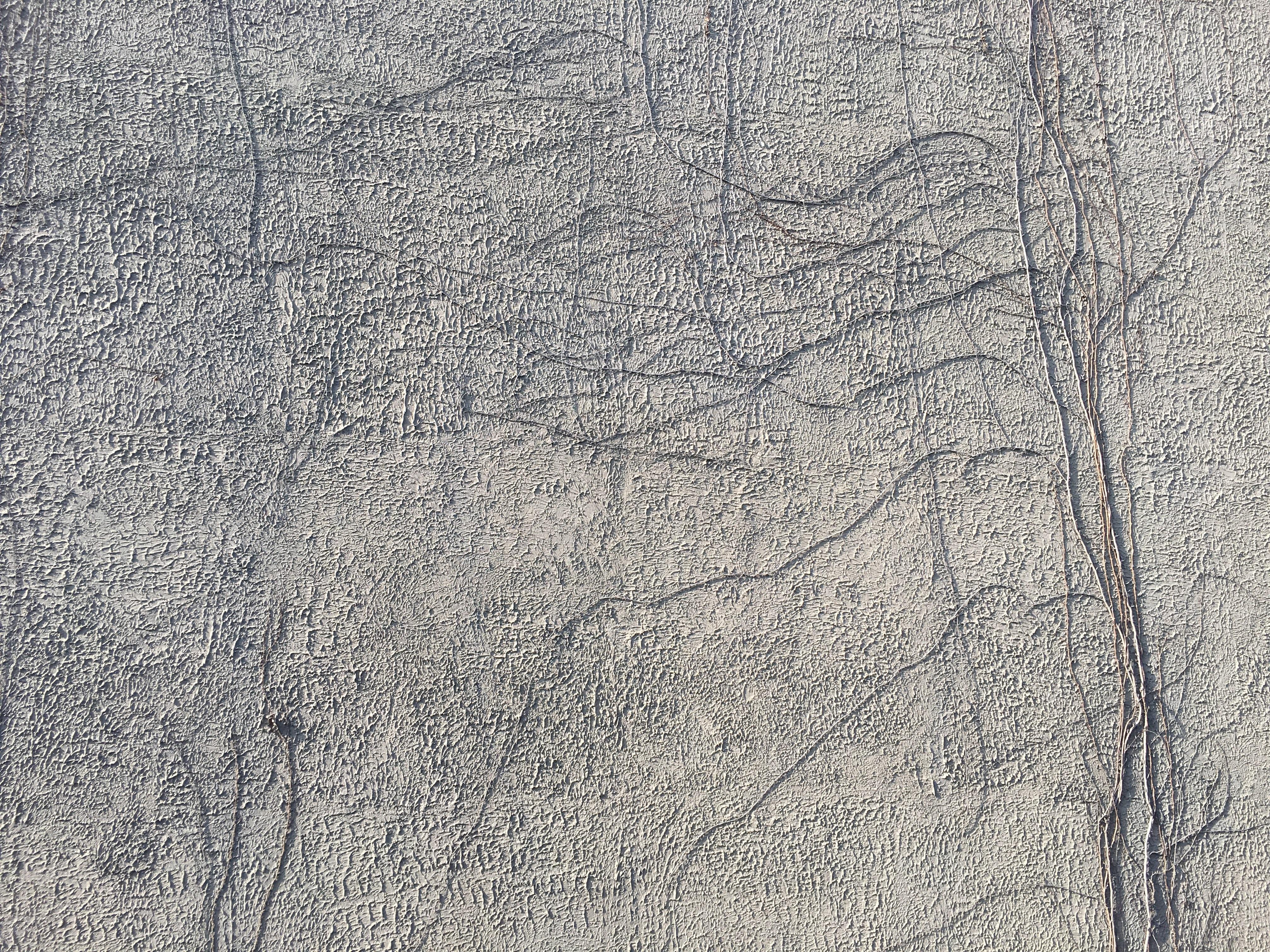 Free Images Vine White Texture Floor Wall Asphalt