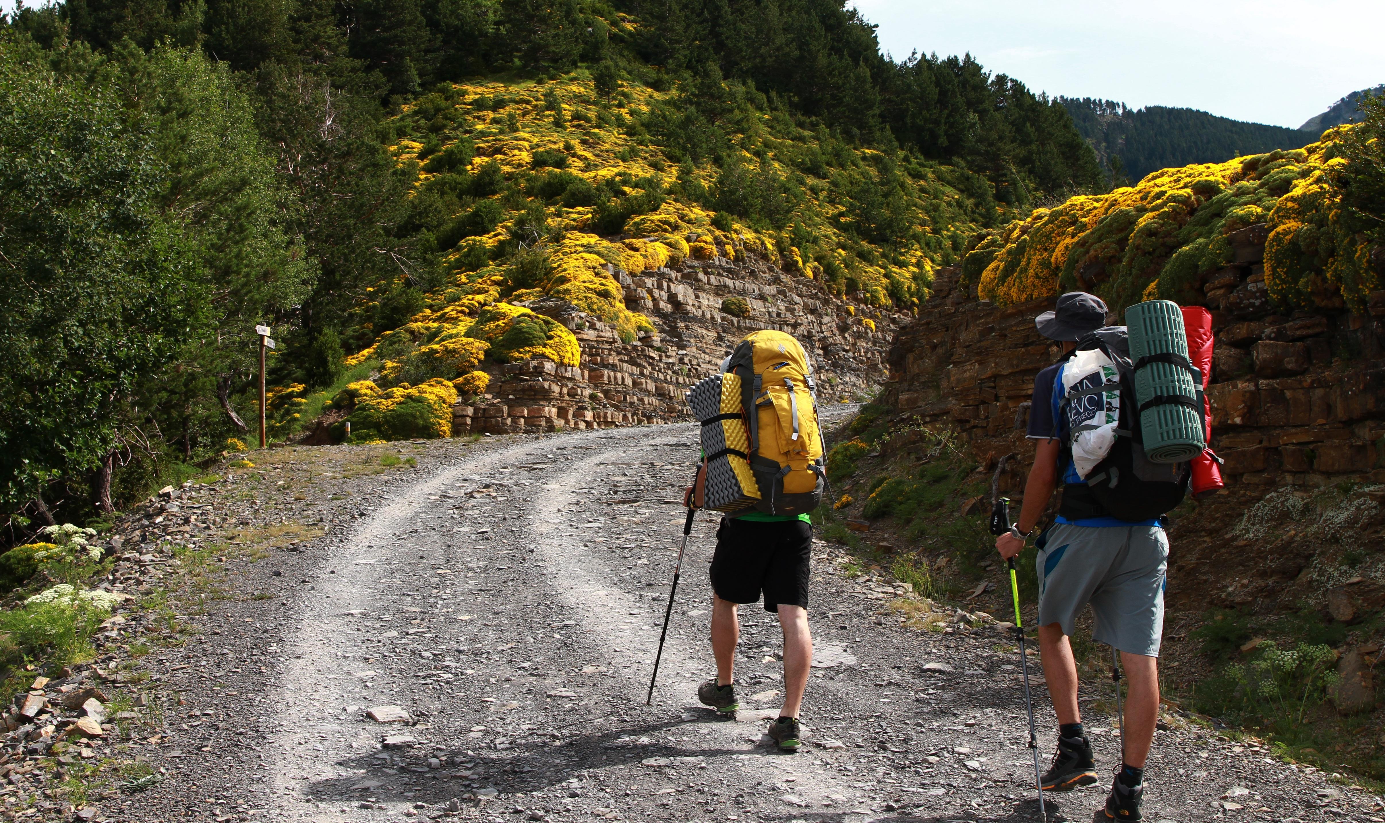 Free Images : walking, mountain, hiking, trail, adventure ...