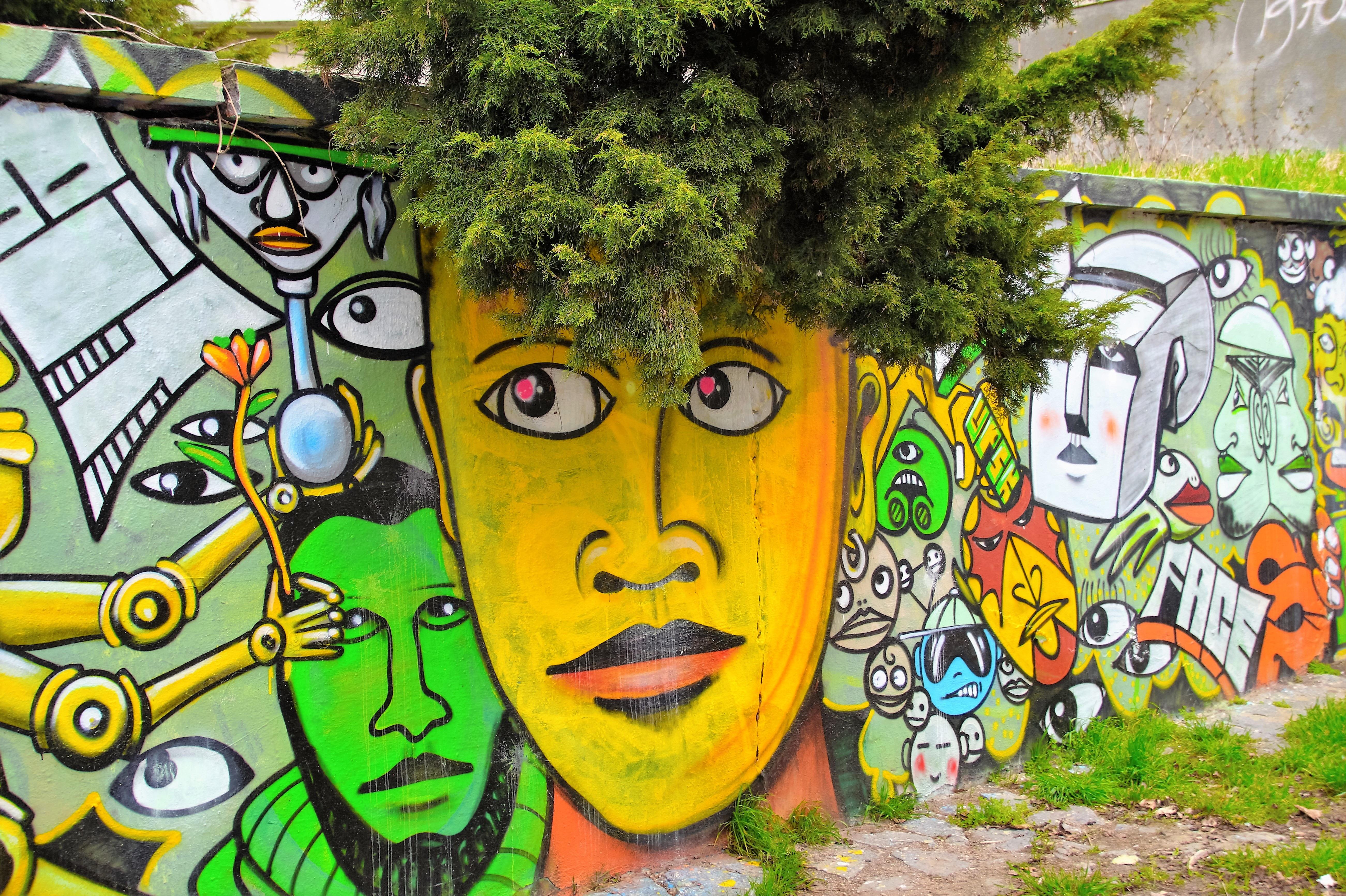 Free Images : graffiti, street art, mural, image, graphite, modern ...