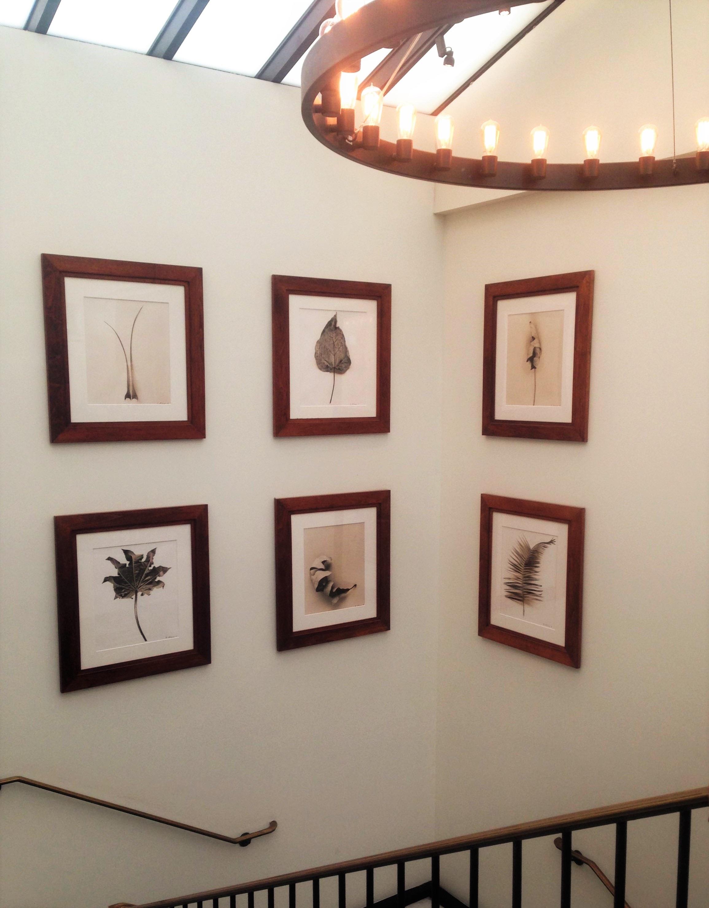 Fotos gratis : pared, diseño de interiores, art, marco, exposición ...