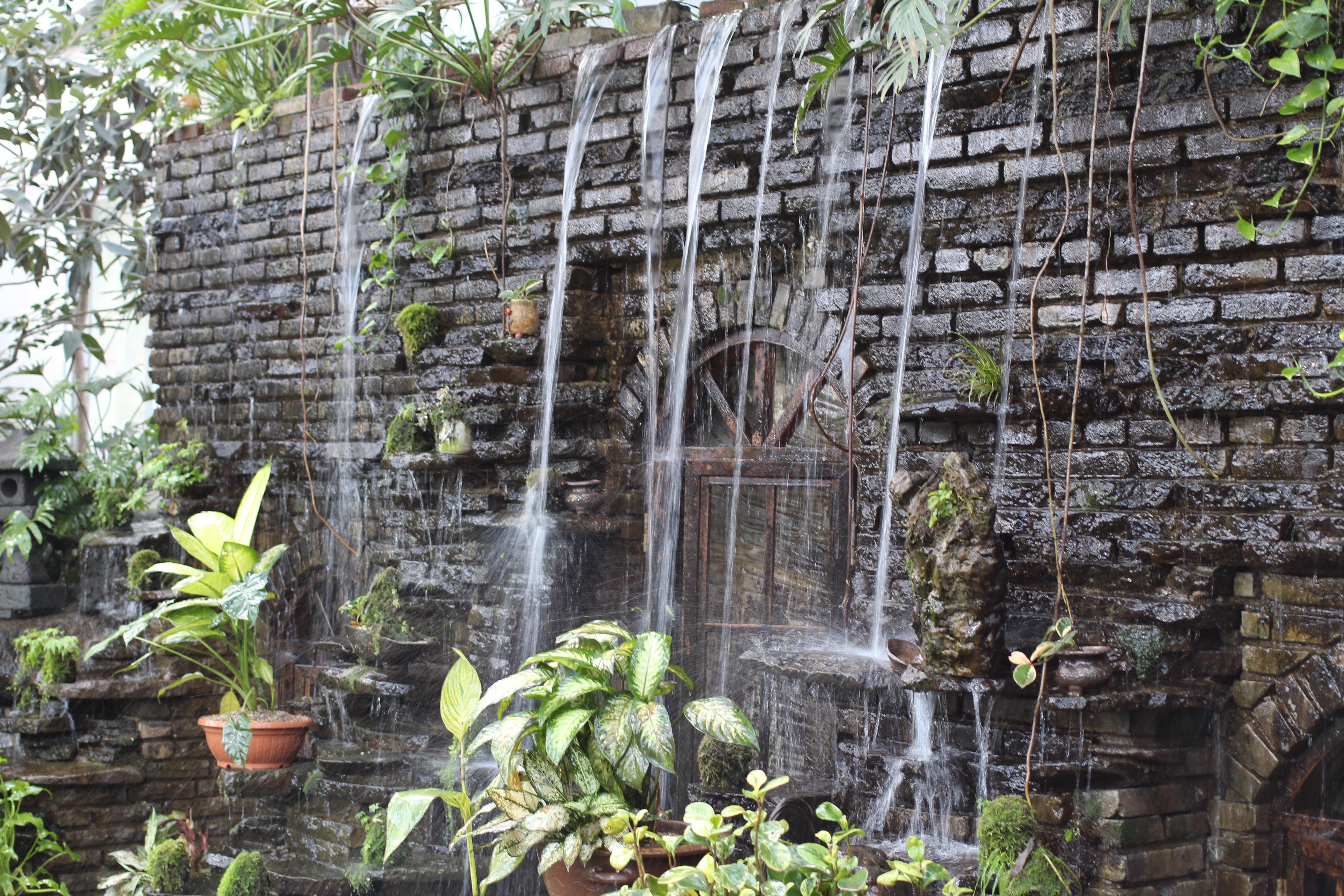 Stenen Muur Tuin : Gratis afbeeldingen oerwoud achtererf stenen muur tuin