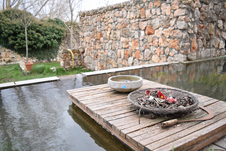 Immagini belle parete passerella stagno piscina for Stagno in giardino