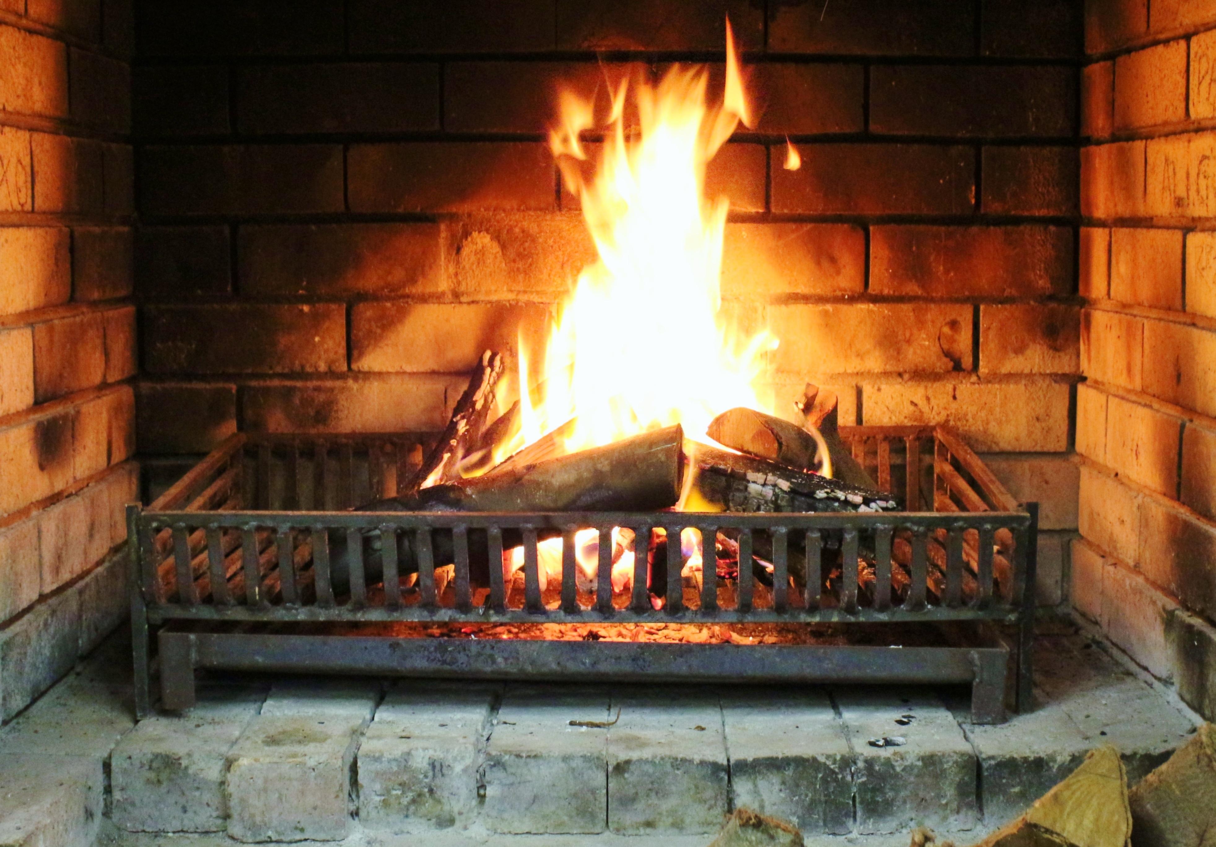 무료 이미지 따뜻한 로그 불 고기 요리 화상 난로 바닥 바베큐 그릴 사격하다 야외