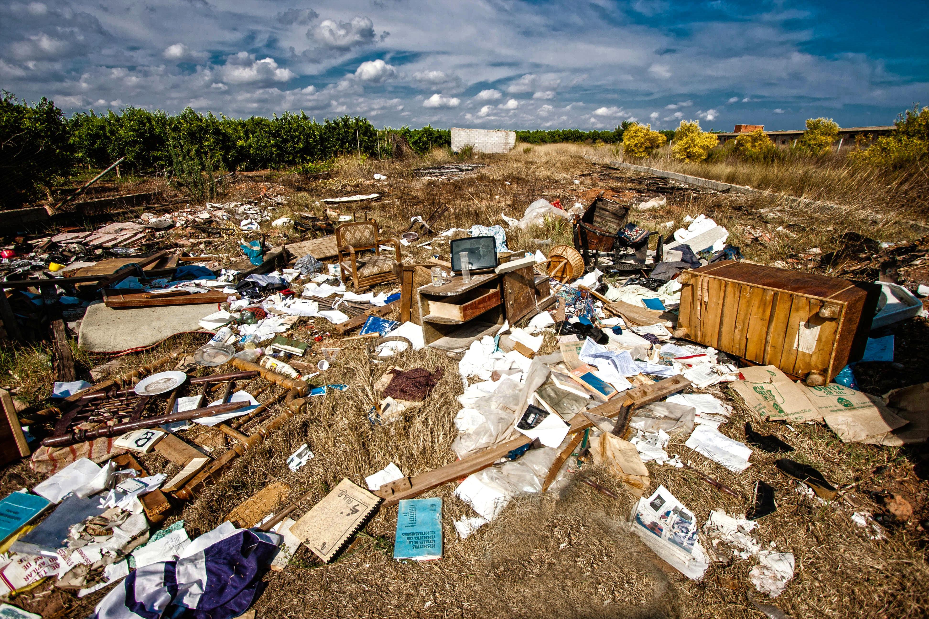 картинки экологическими проблемами