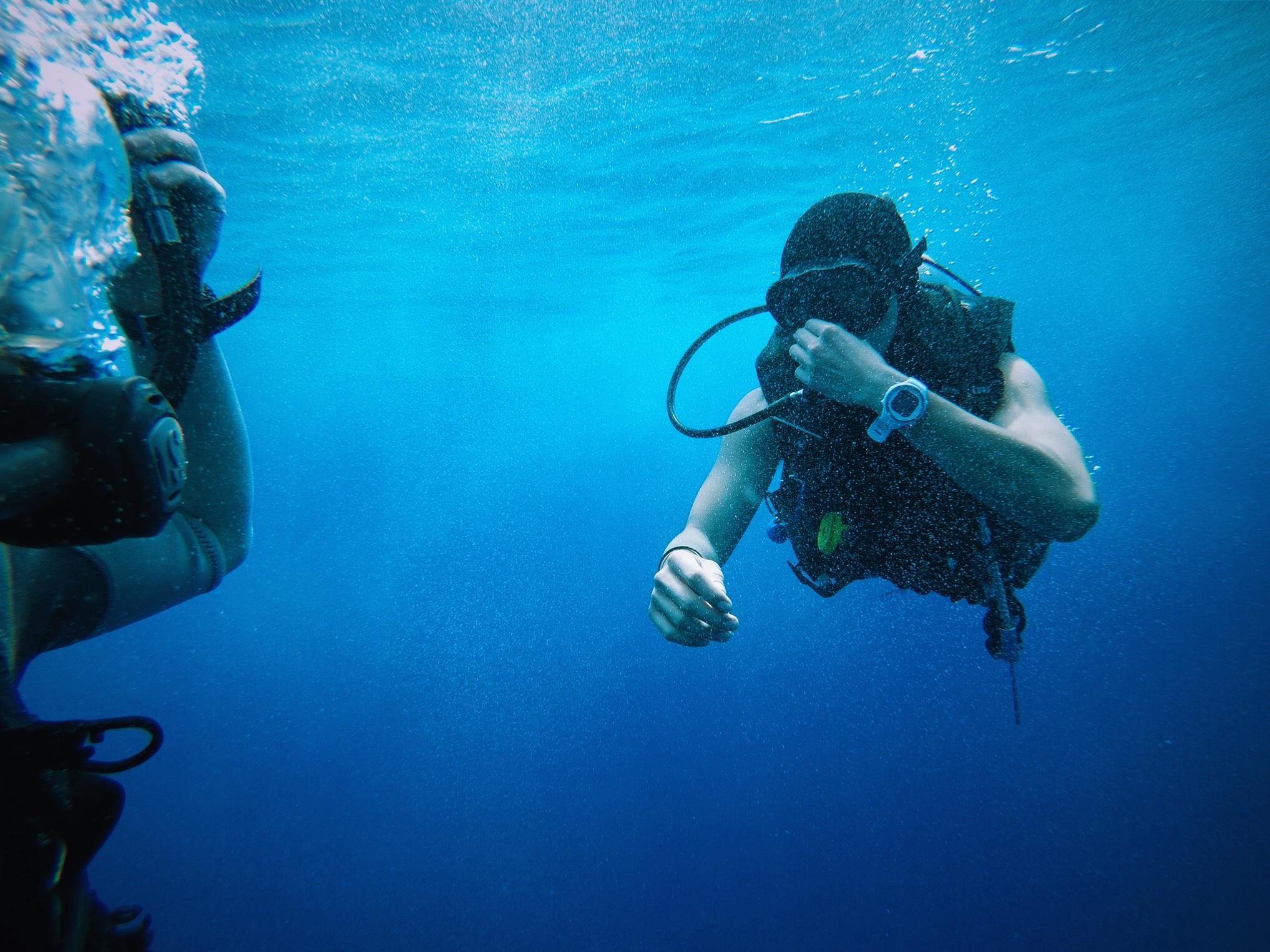 подводные фотографии водолазов ценность представляют золото