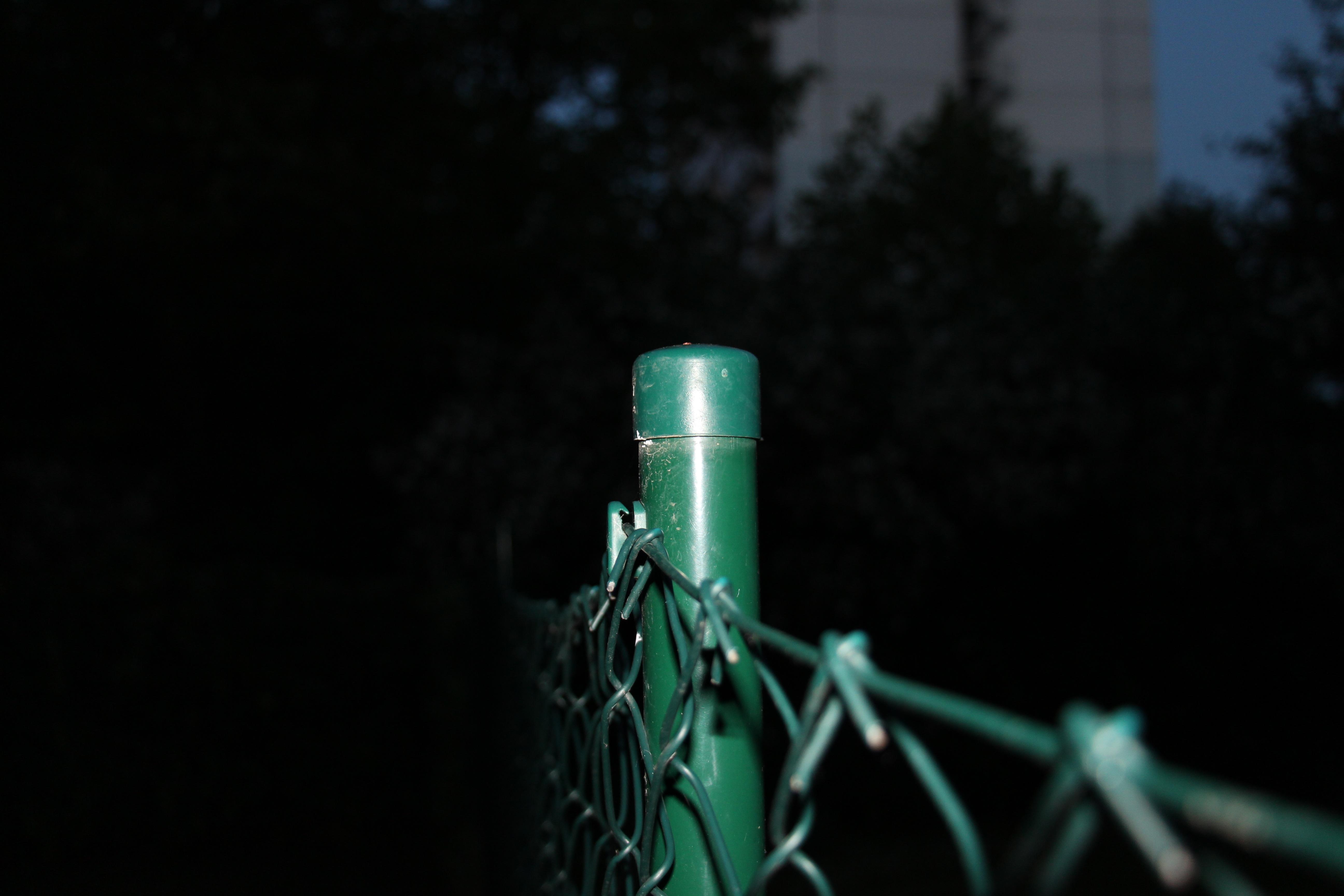 Images Gratuites : eau, branche, lumière, nuit, foncé, câble ...