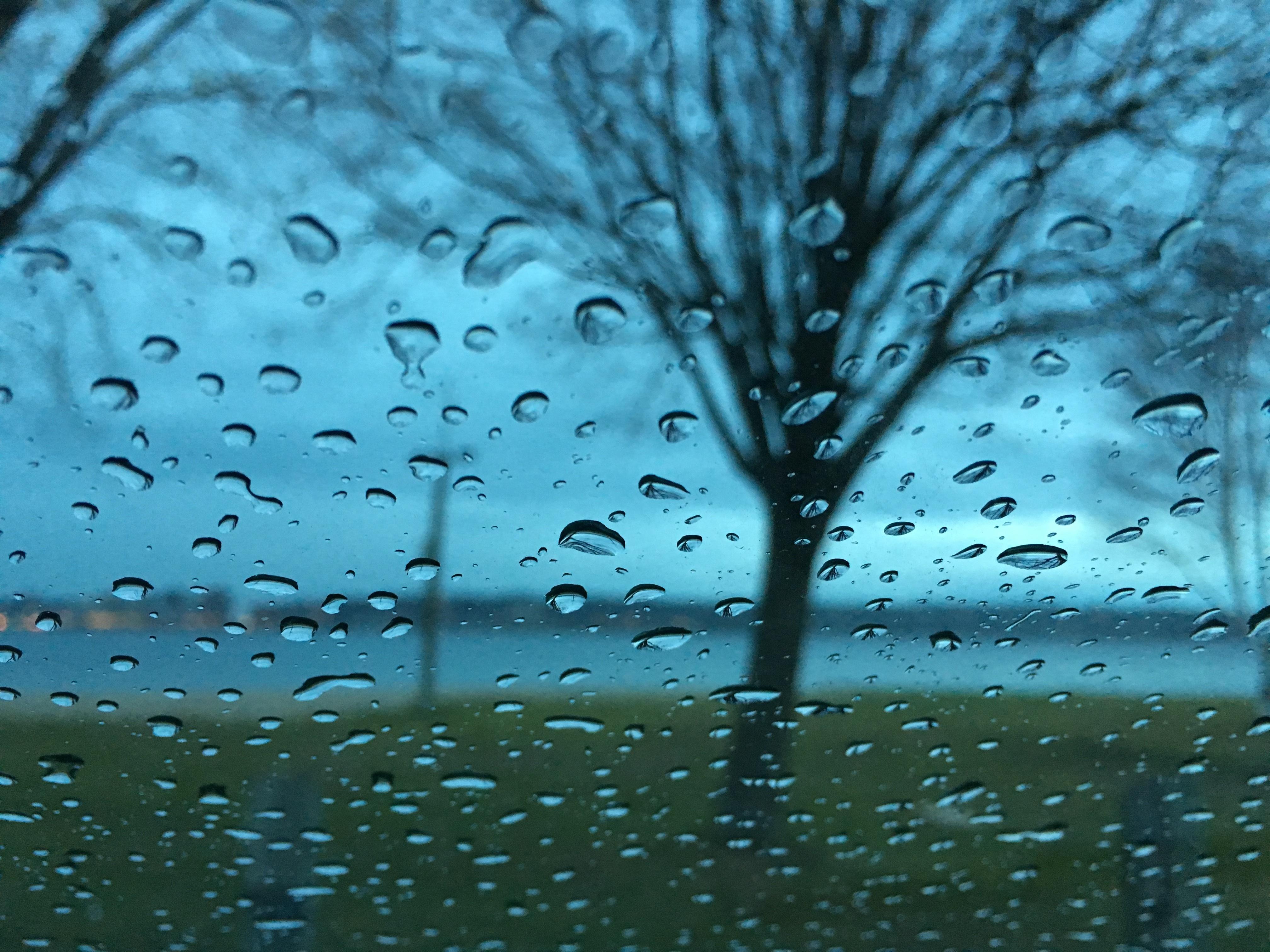 талант картинка погода дождливая фотосессию необходимо