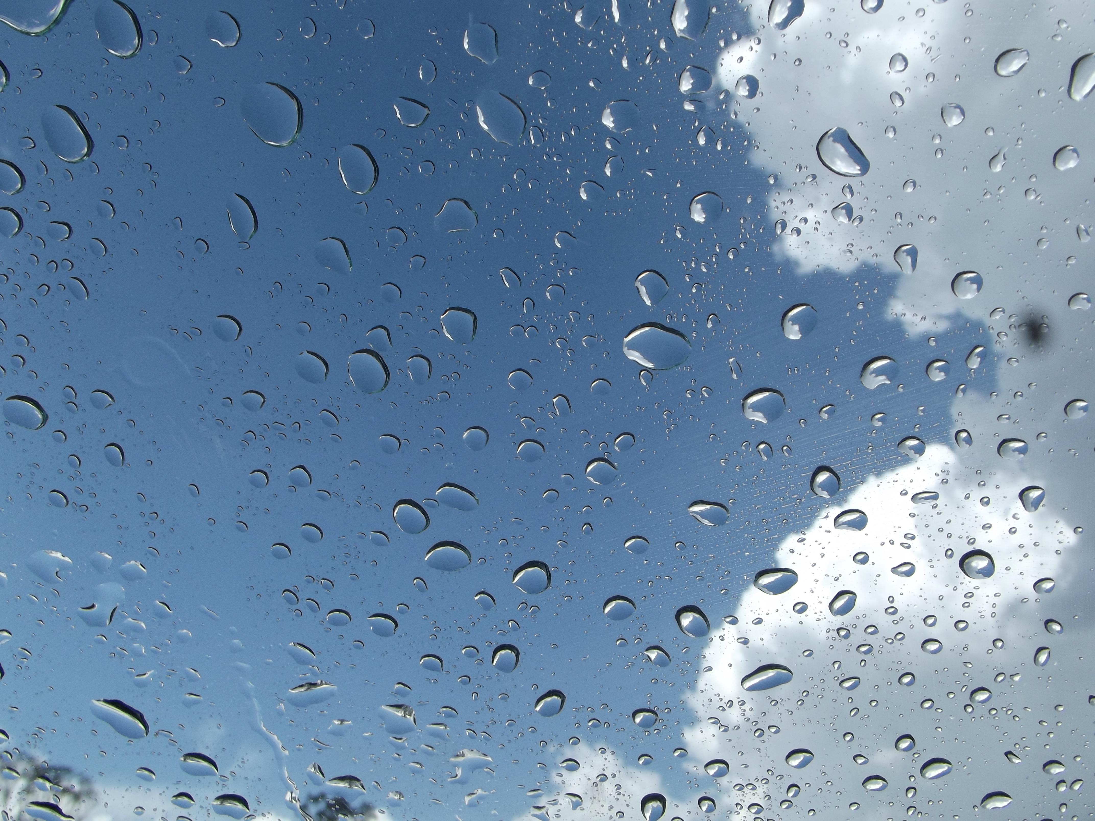 Gambar Air Penurunan Awan Hujan Daun Embun Beku Cuaca Awan