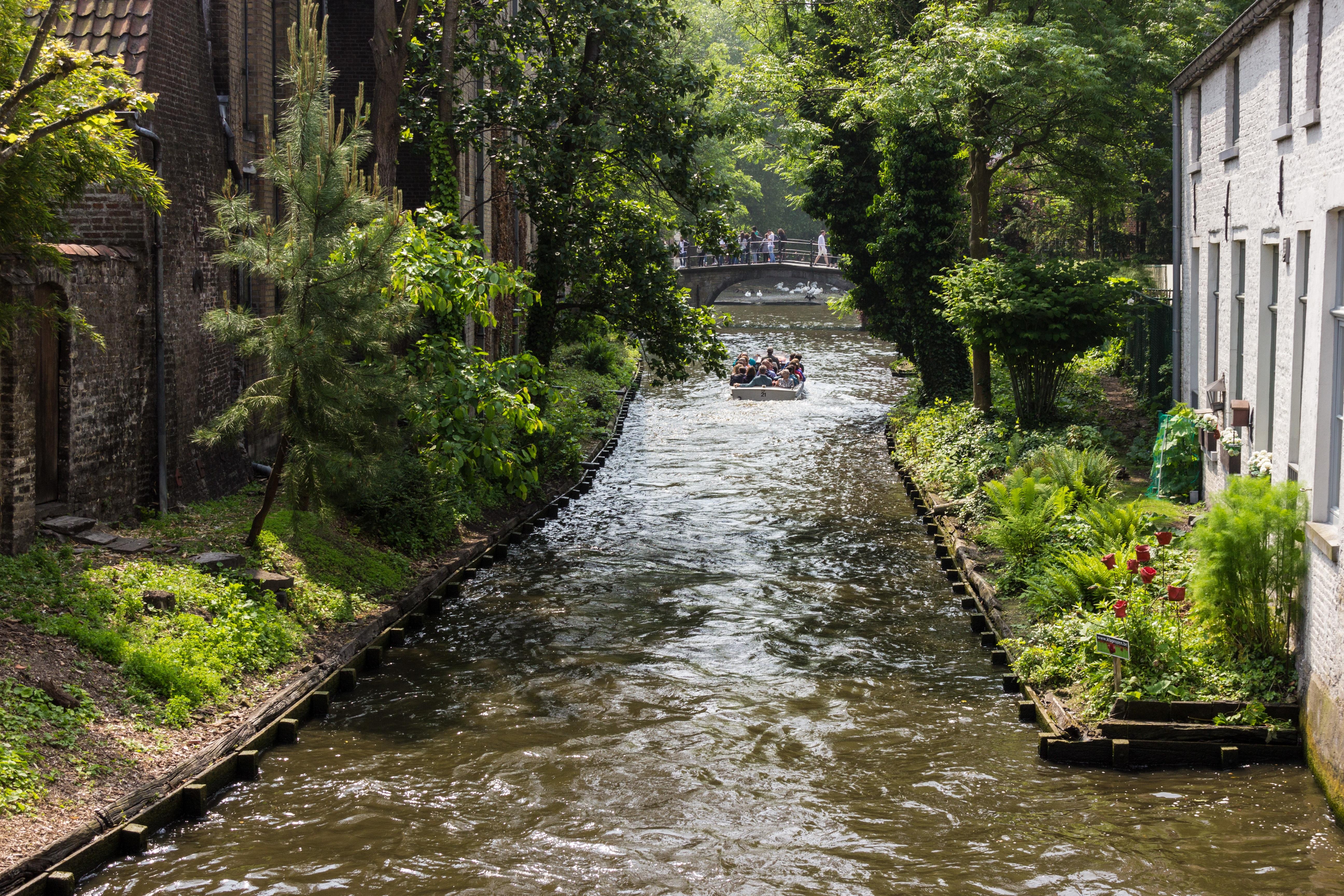Images gratuites eau fleur rivi re canal courant for Jardin romantique francais
