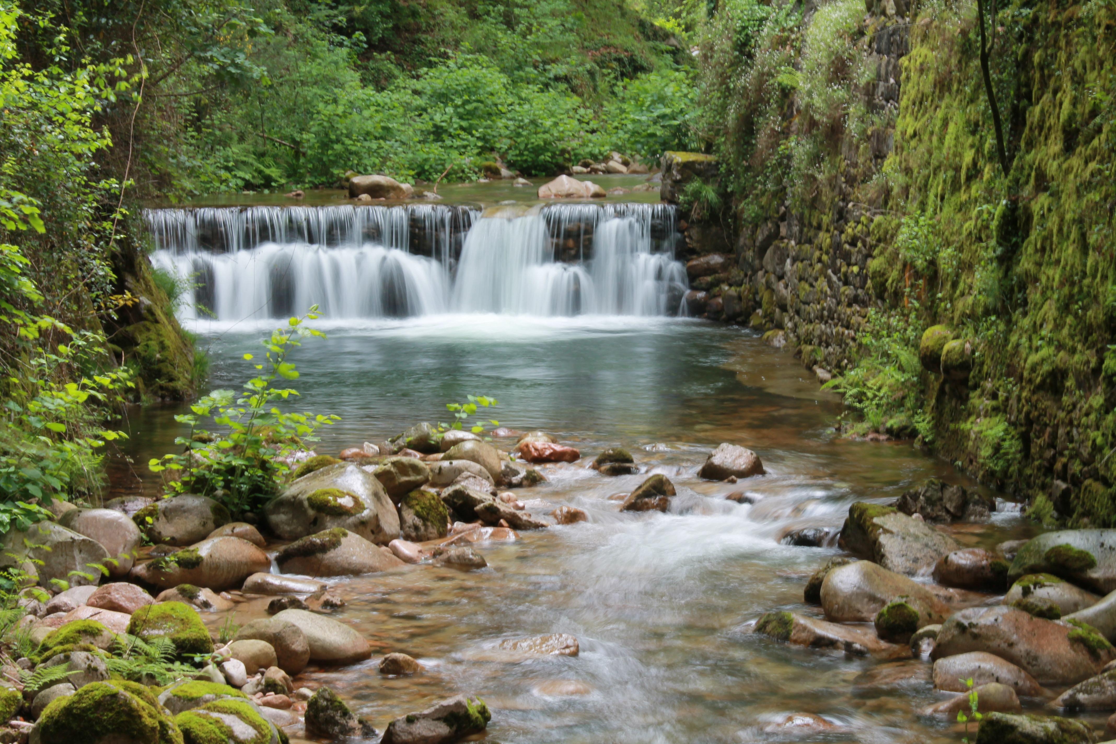 Fluss In Portugal kostenlose foto wasser wald wasserfall bach fluss strom