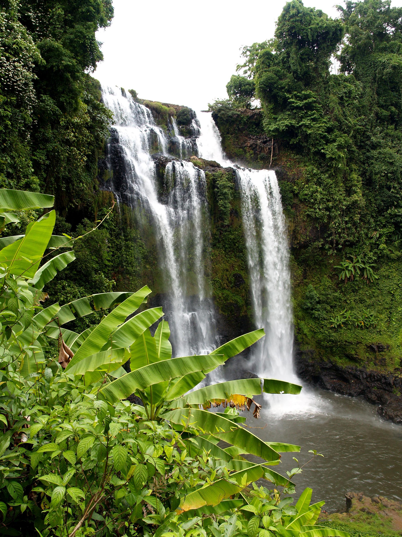 Images gratuites eau cascade courant jungle tropical for Cascade d eau jardin