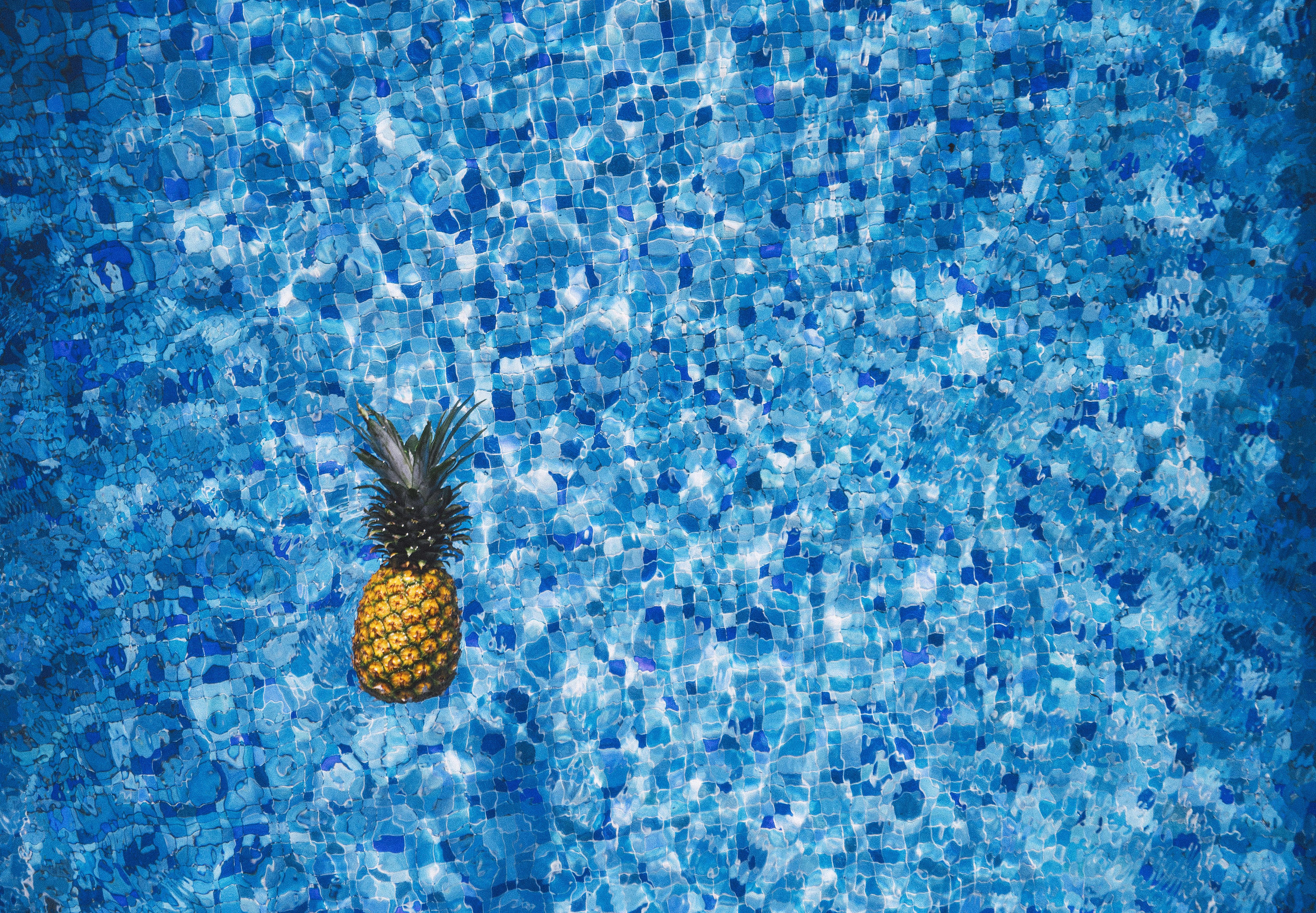 Kostenlose foto : Wasser, Blume, Schwimmbad, Muster, Pollen, Farbe ...