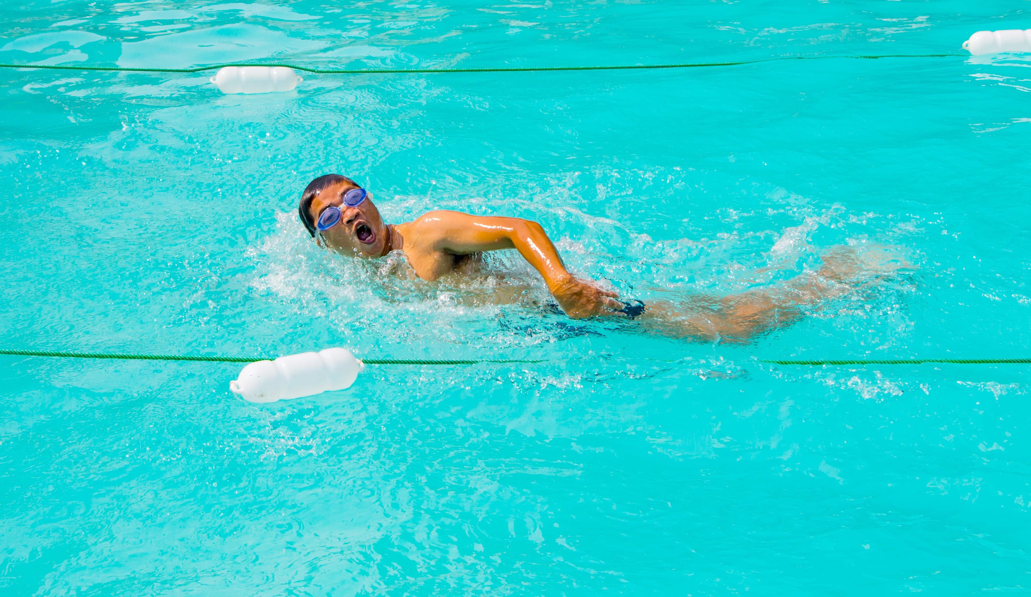 Пловец книга скачать
