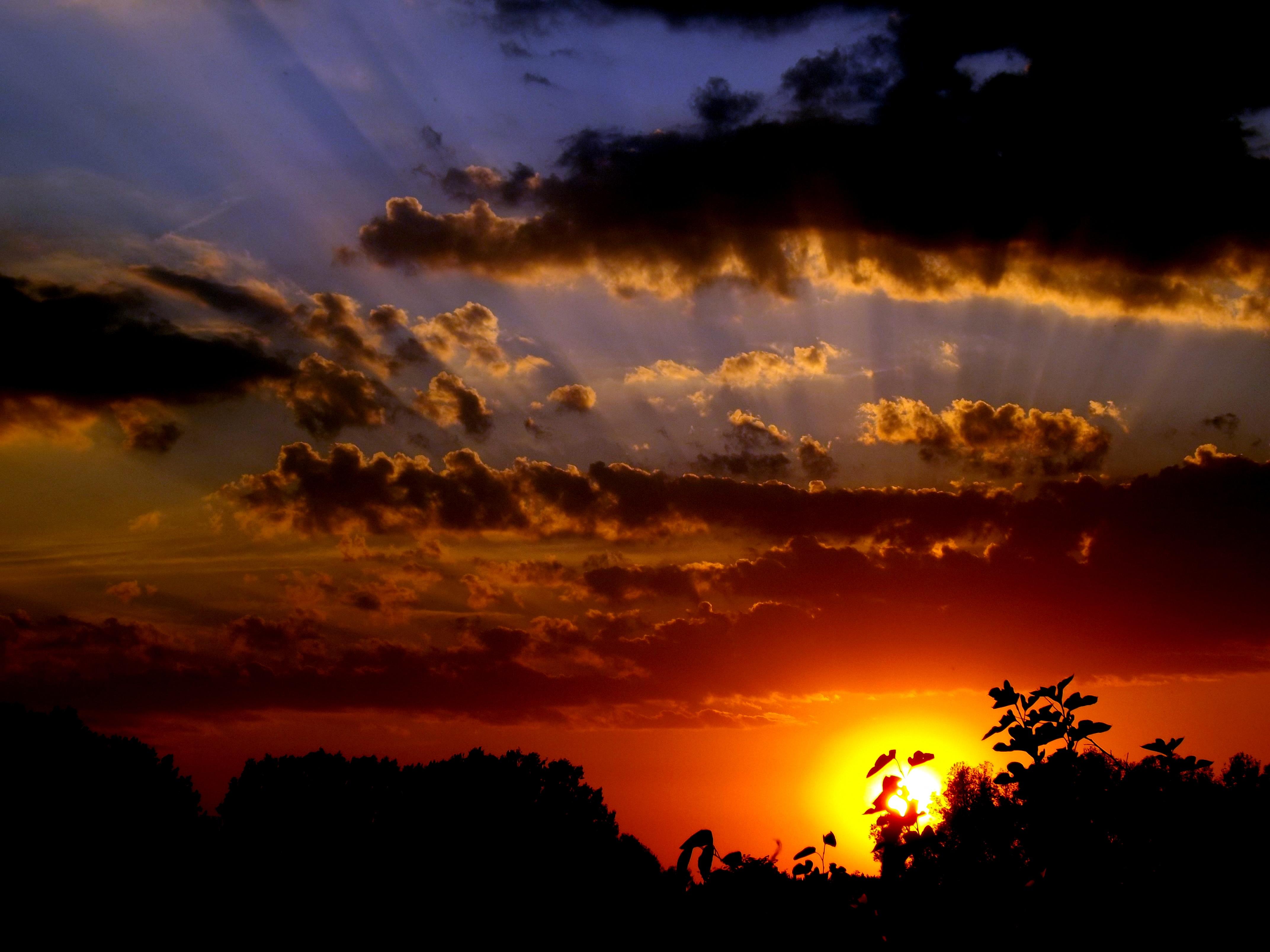 free images water horizon cloud sun sunrise sunset