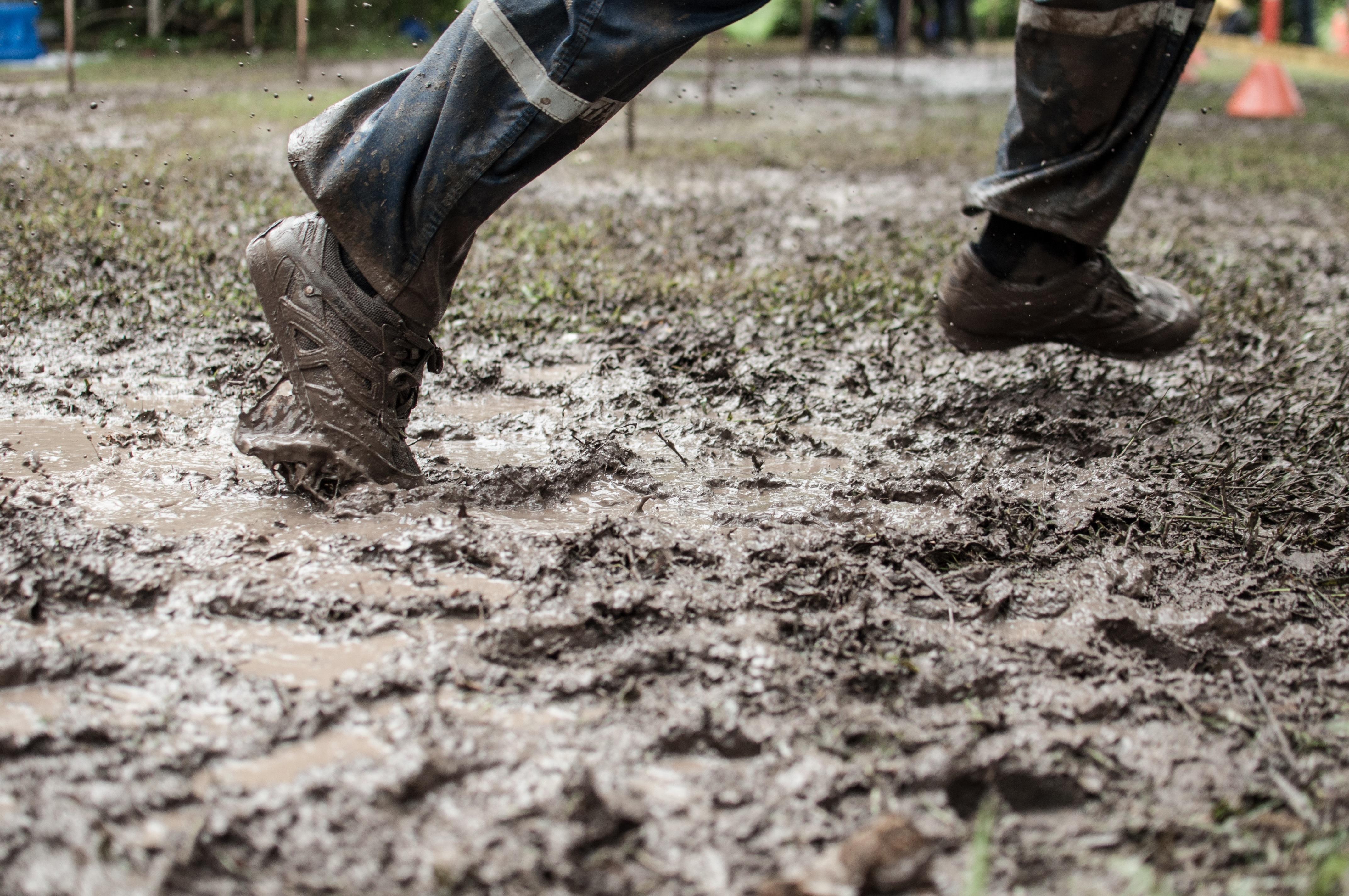 картинки для гряз