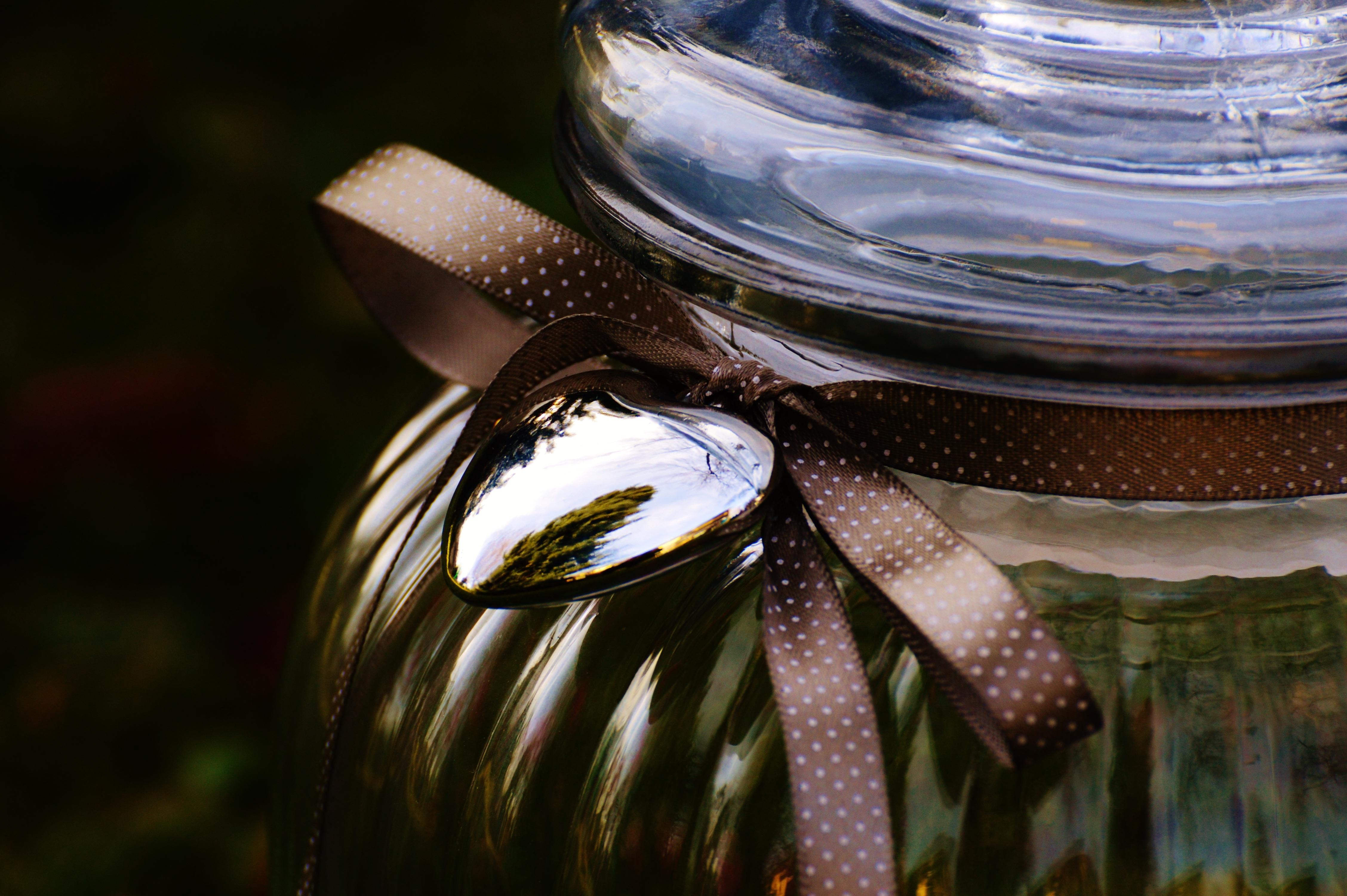 Kostenlose foto : Wasser, Licht, Pflanze, Fotografie, Sonnenlicht ...