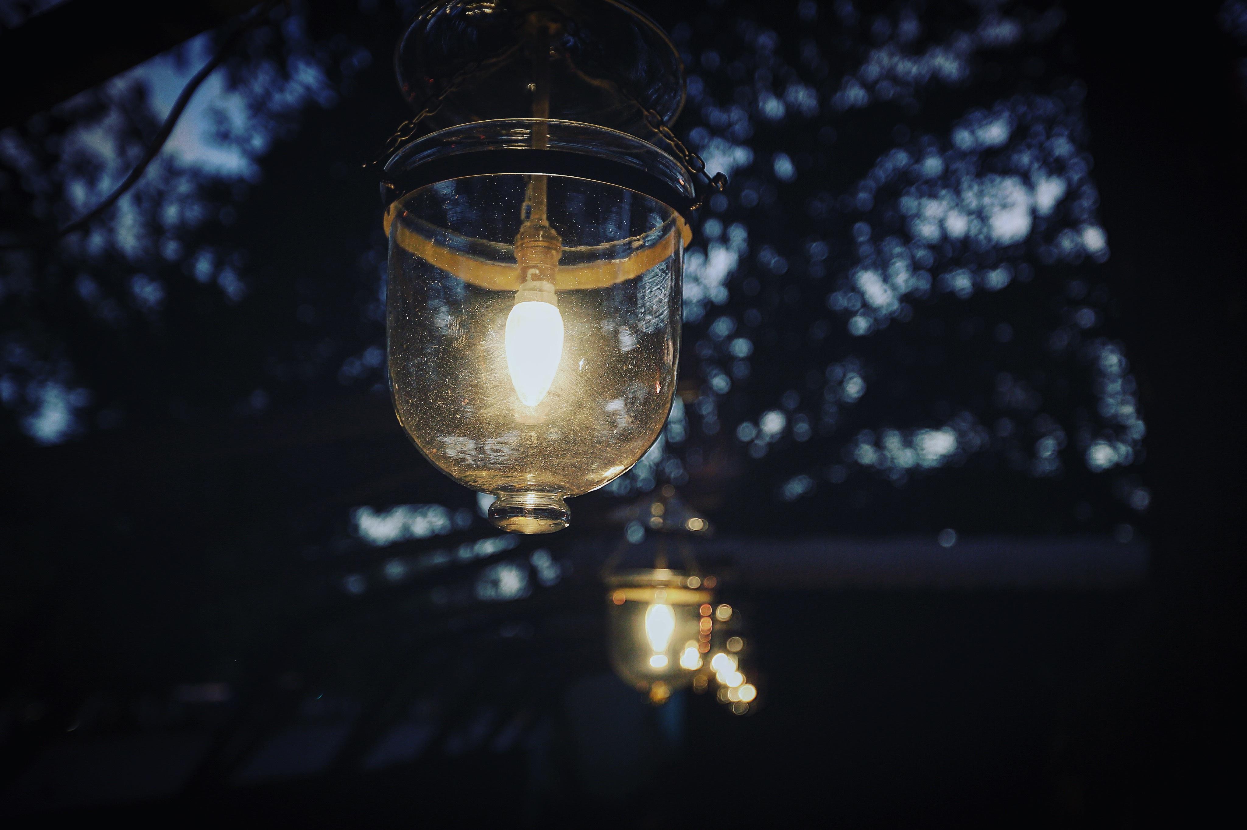 bulbs photo photography light r lighting jesse