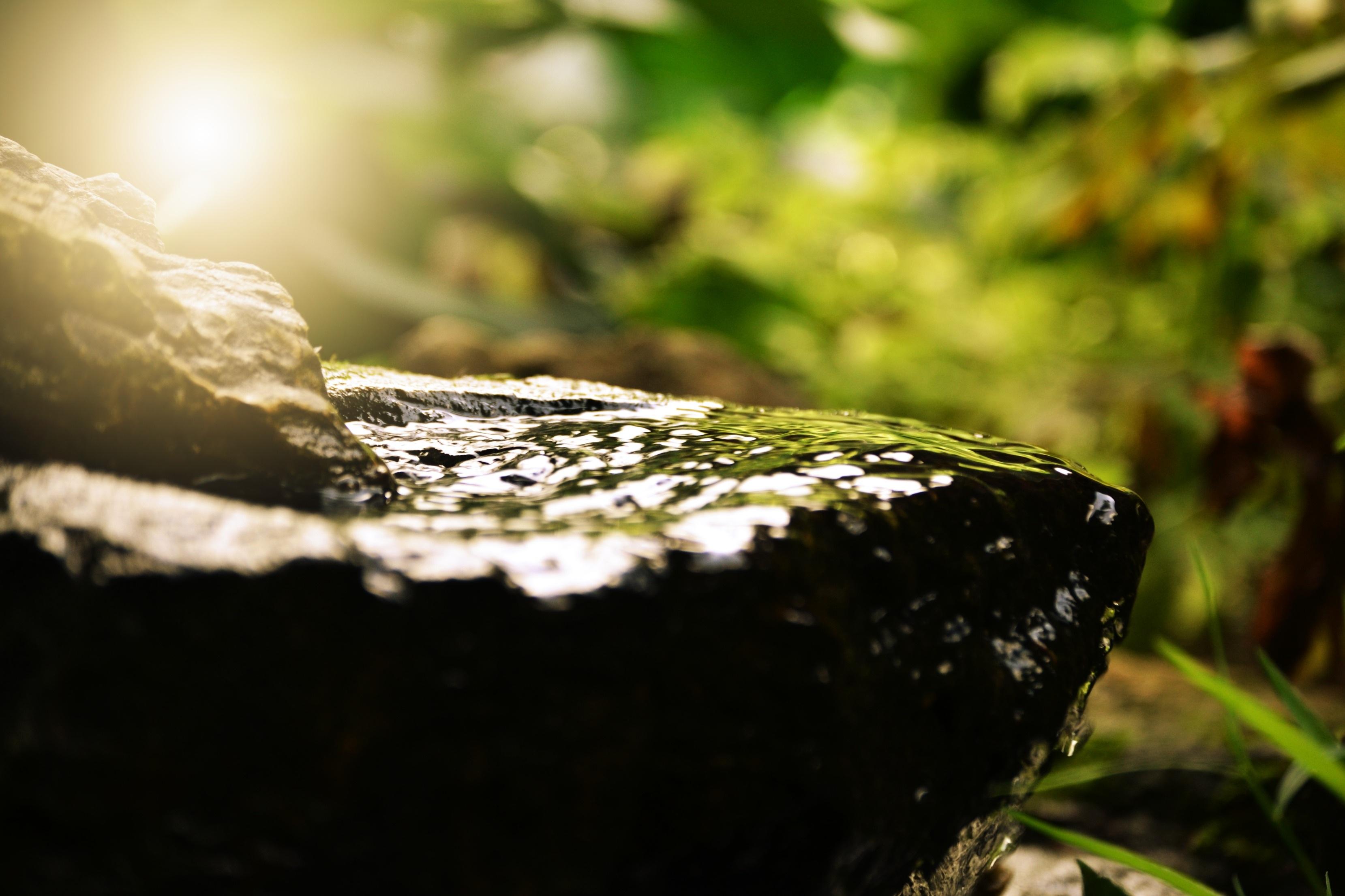 relaxation zen nature