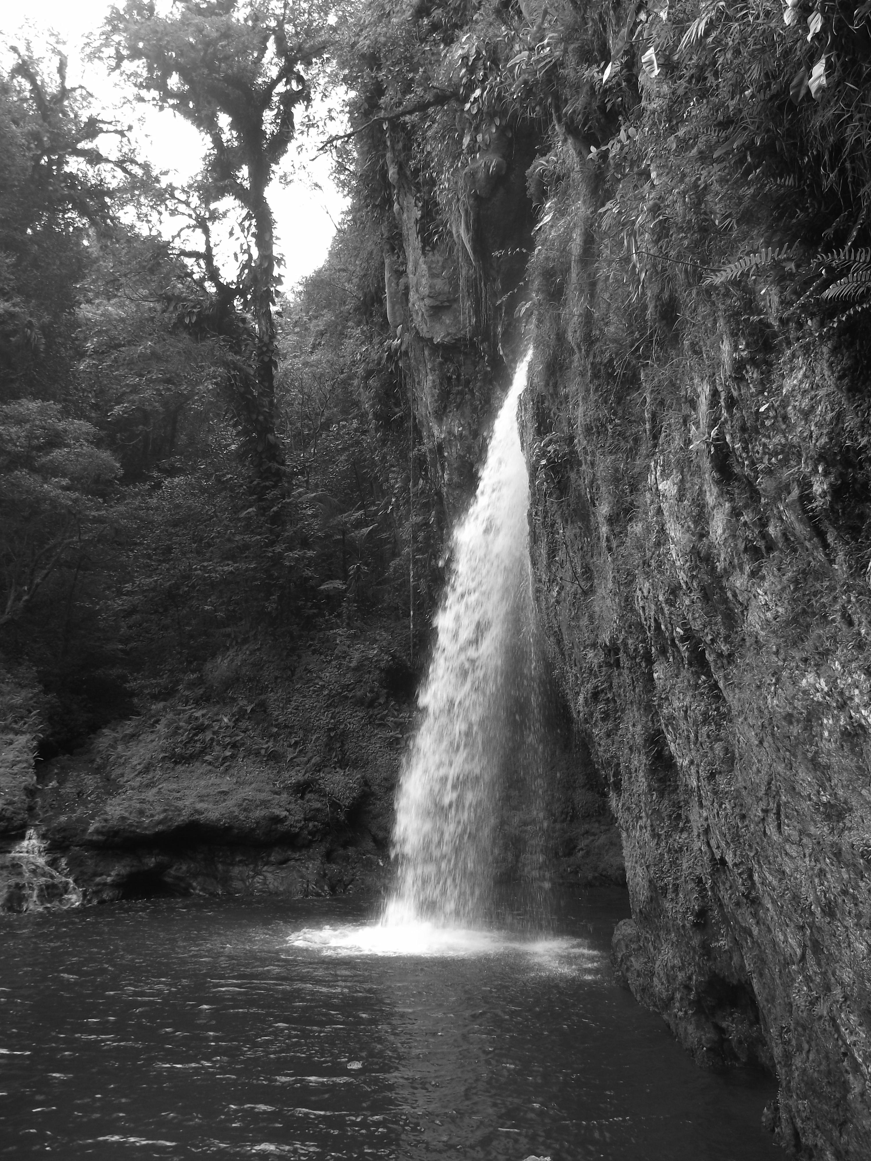 узнать, черно белые картинки водопад сотрудничесво подтвердило надежность