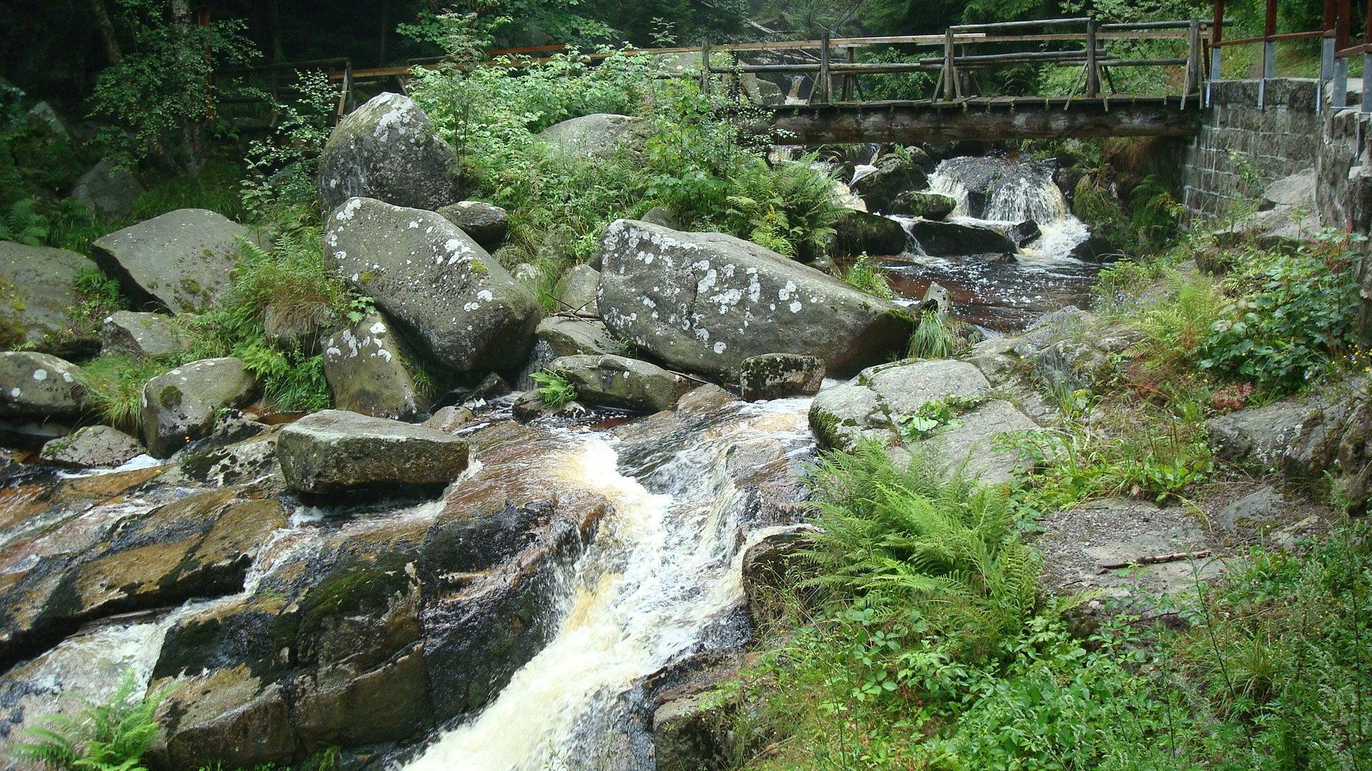 Water Nature Rock Waterfall Creek Pond Stream Garden Body Of Water Trees  Vegetation Rainforest Mood Resin