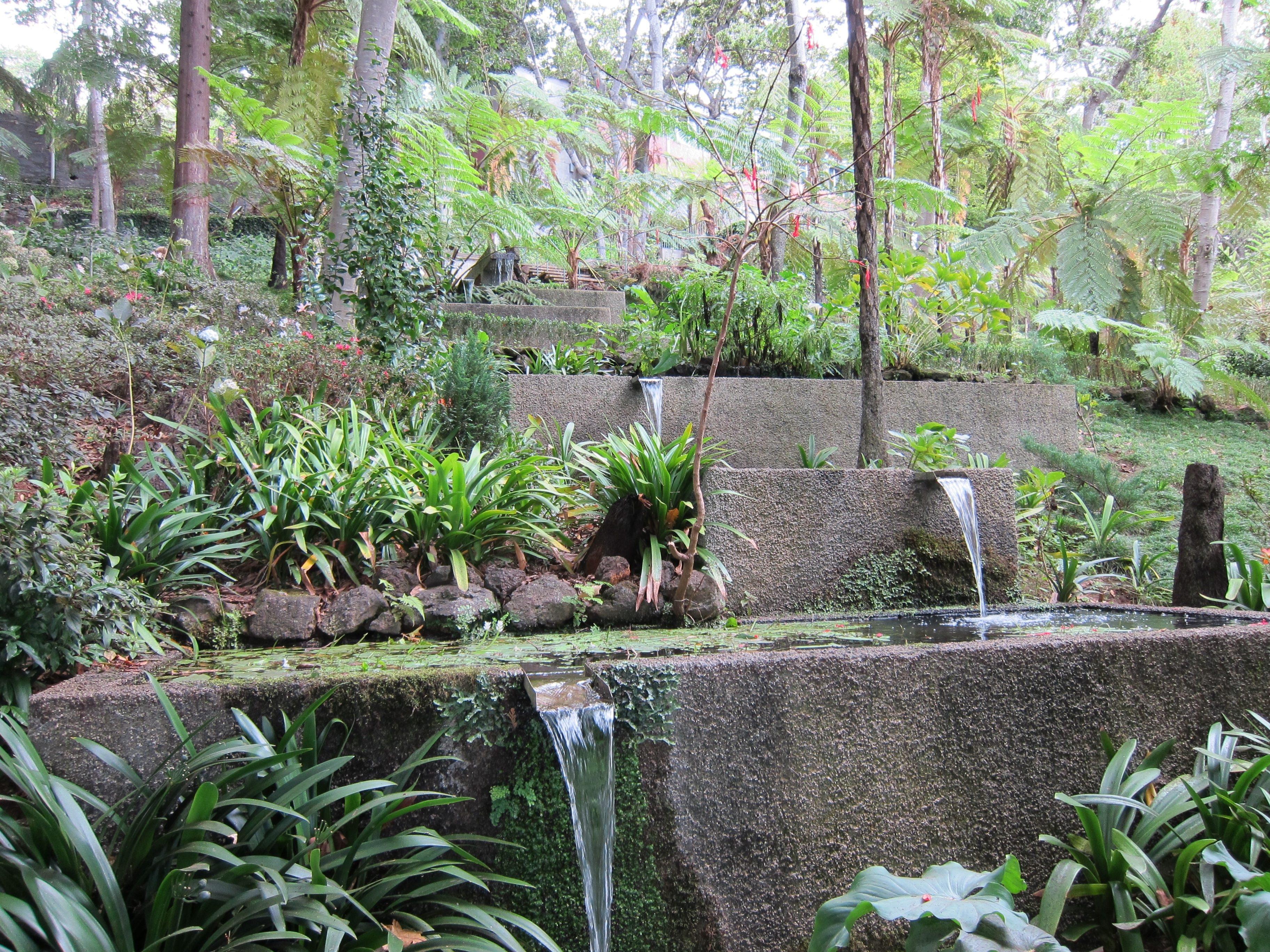 Fotos gratis agua naturaleza cascada flor piedra for Cascadas para patios