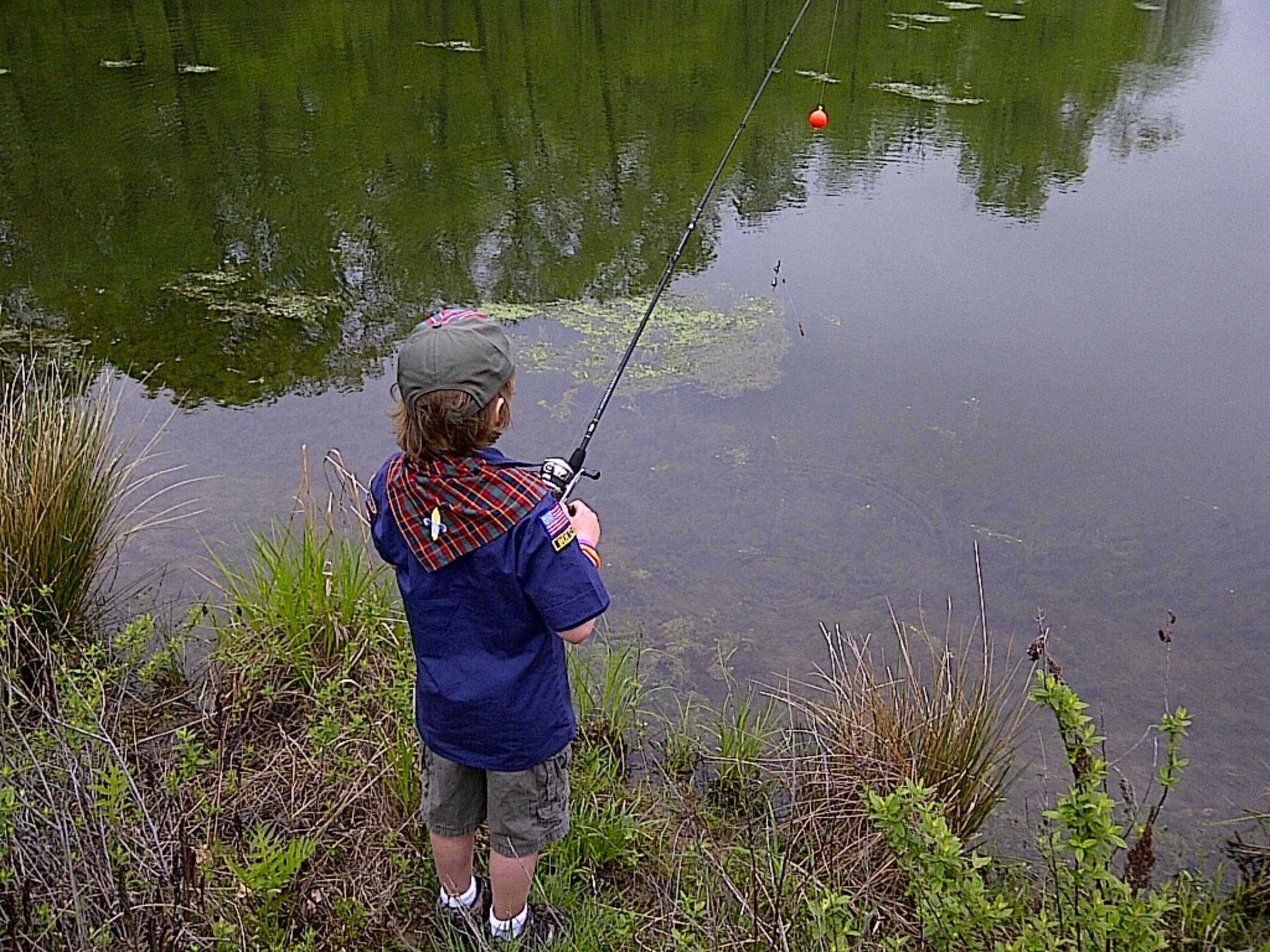 картинка ловят рыбу эконом-класса проводится тогда