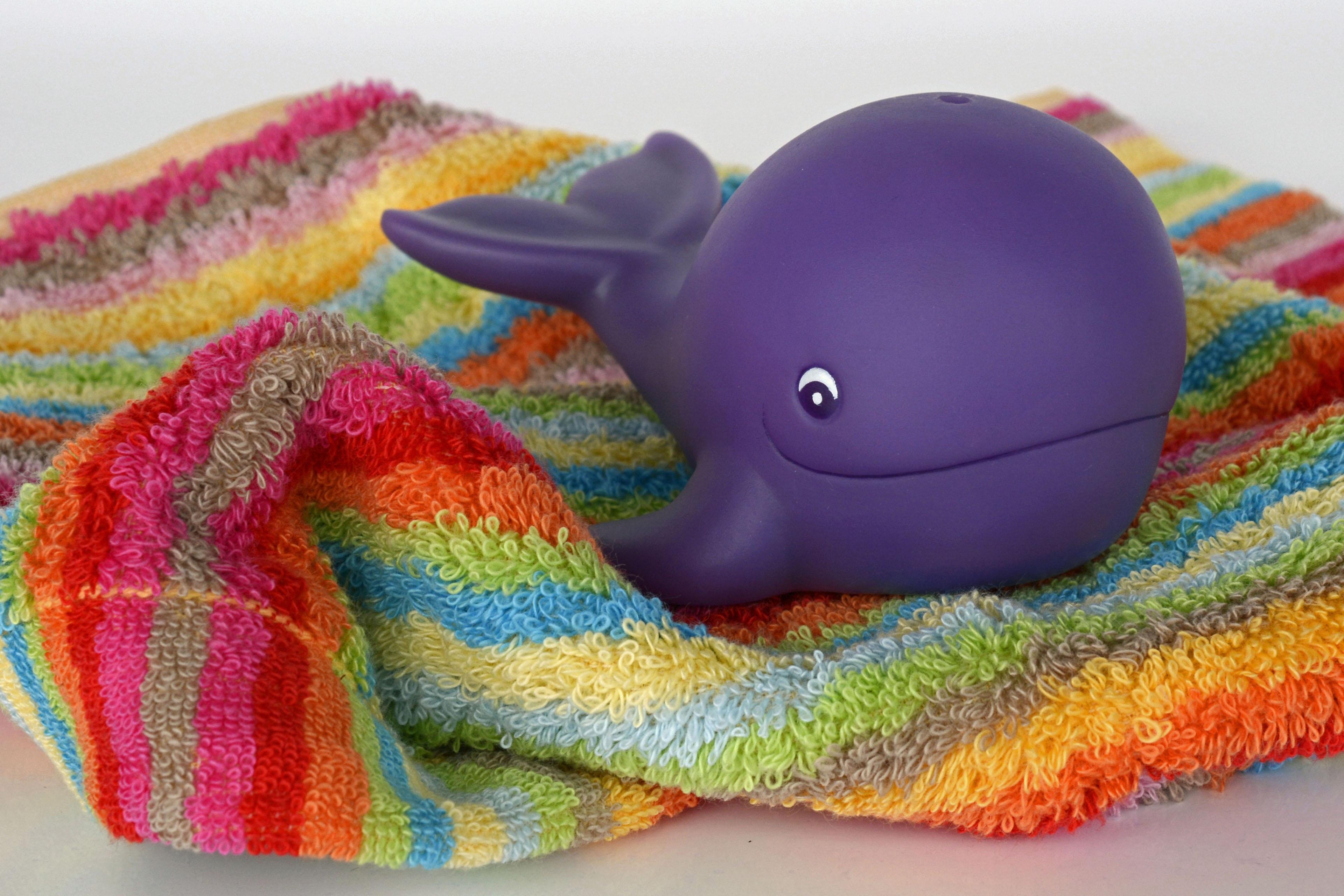 Kostenlose foto : spielen, nass, Tier, schwimmen, Farbe, Kind, bunt ...