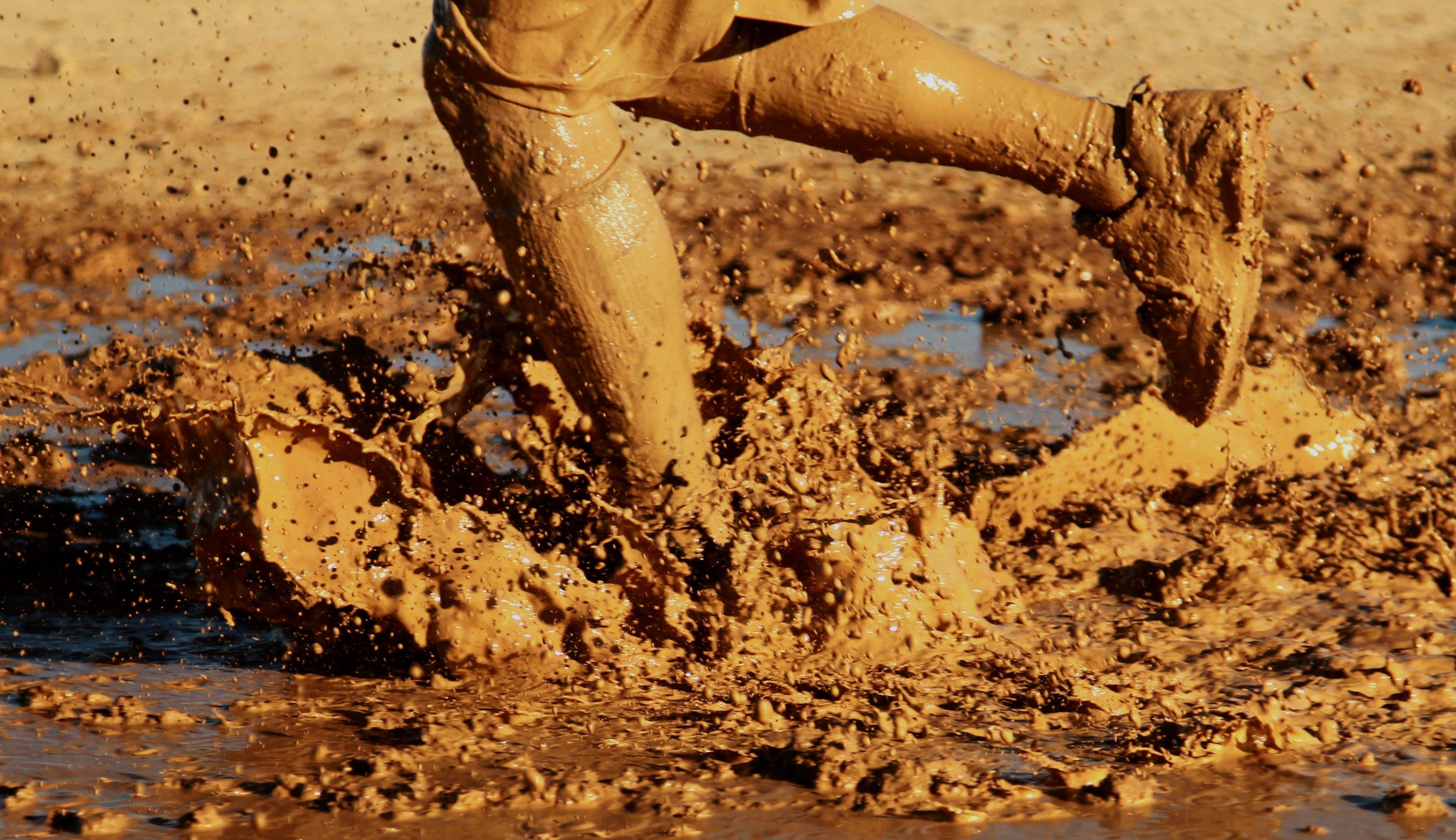 сделать поделку фотосессия с водой и грязью делом выбирается нужное