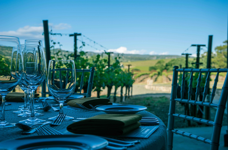 Water Vine Vineyard Wine Scenic Backyard Romantic Blue Tourism California Grapevine  Dining Dinner Estate Winery Napa