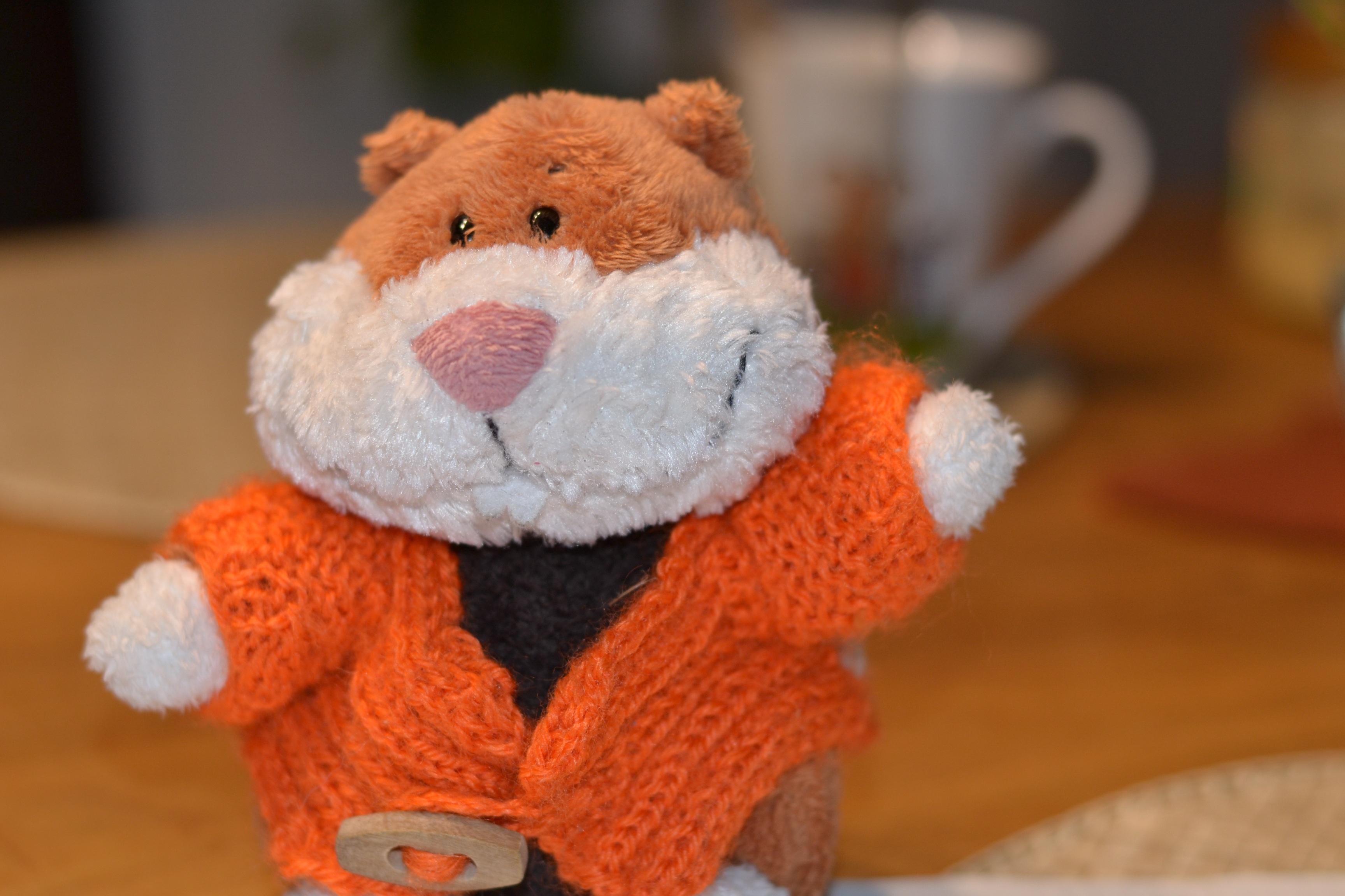 Kostenlose foto : Welle, Orange, Spielzeug, Hamster, Material ...