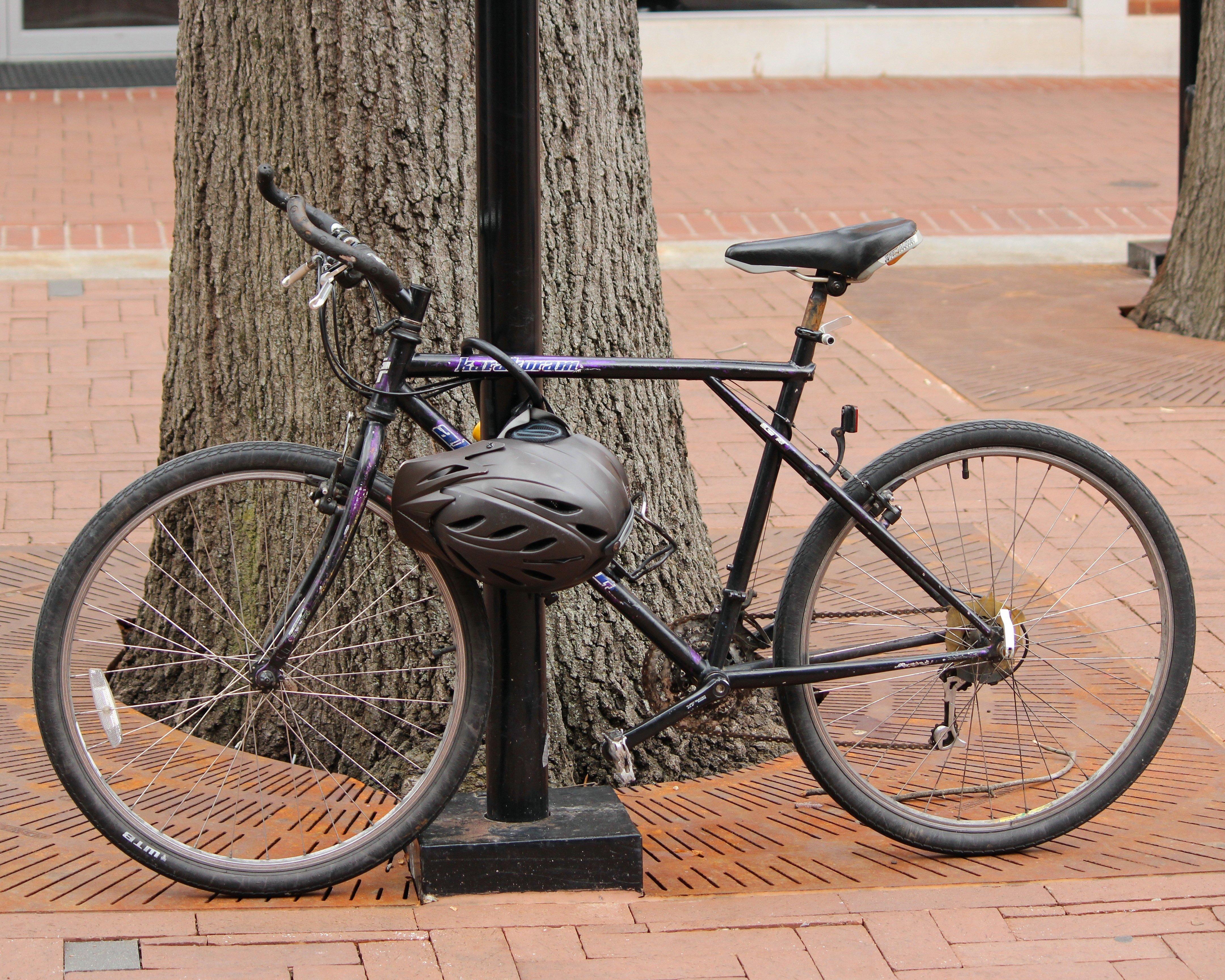 Fotos gratis : rueda, transporte, polo, vehículo, equipo deportivo ...