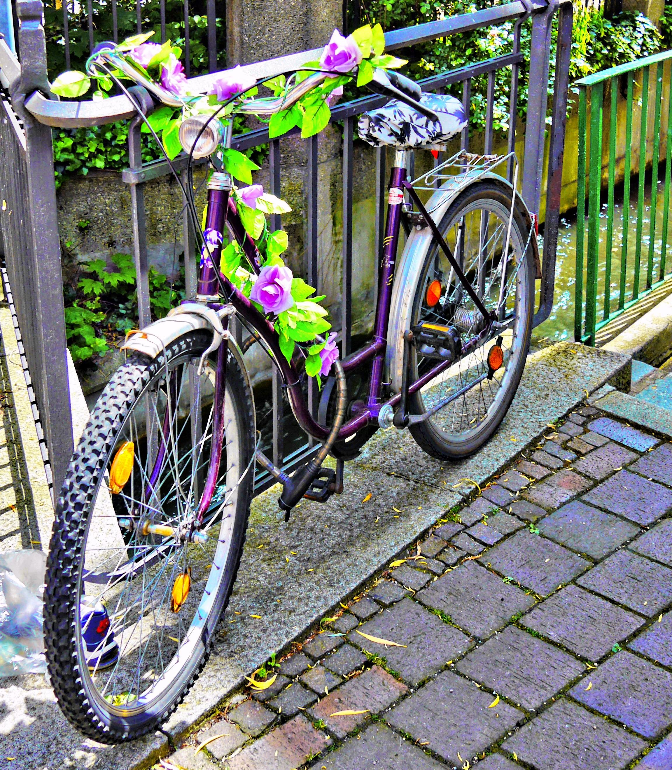 украшенный велосипед картинки поезде ходят