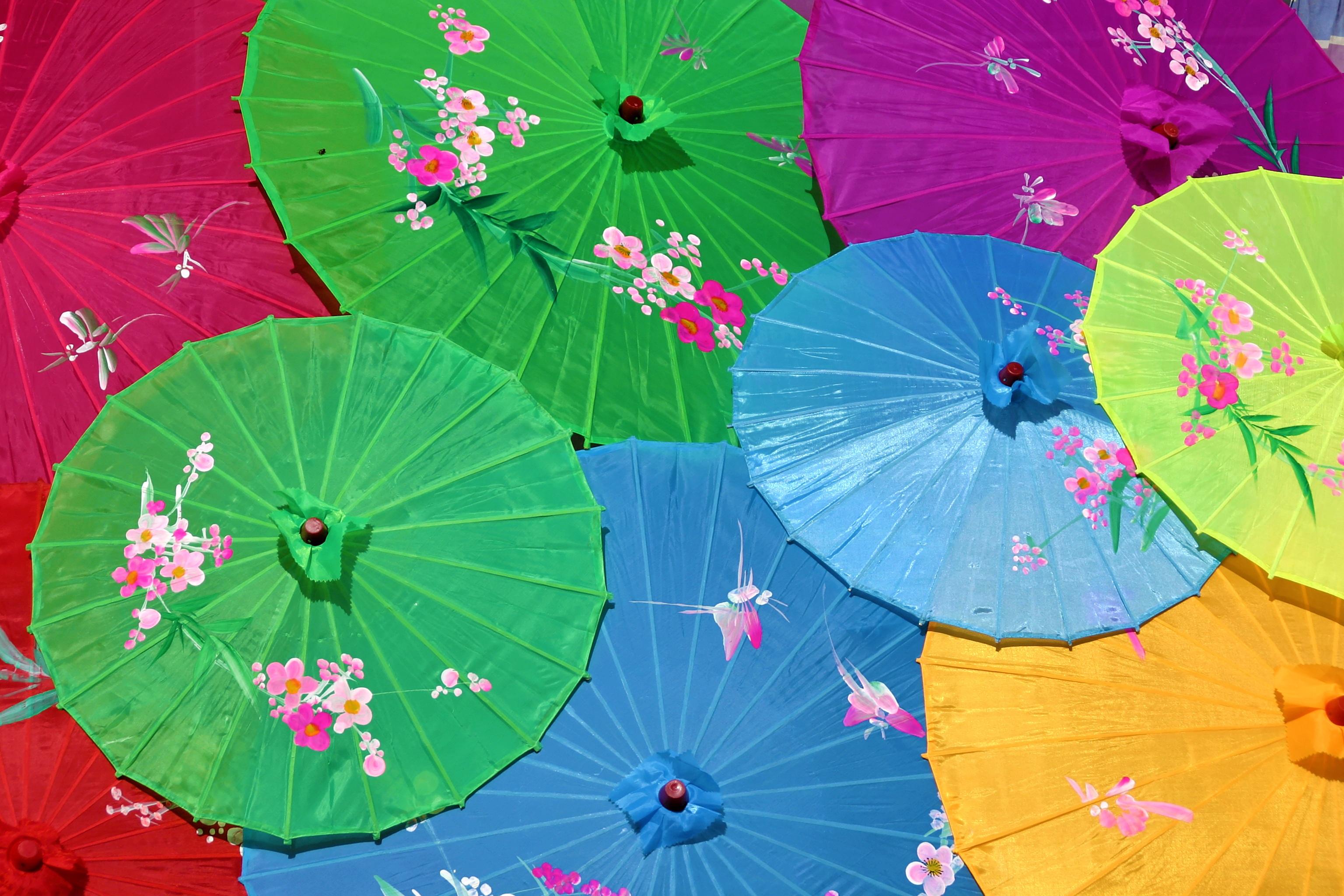 Free Images : wheel, flower, petal, umbrella, color, colorful ...