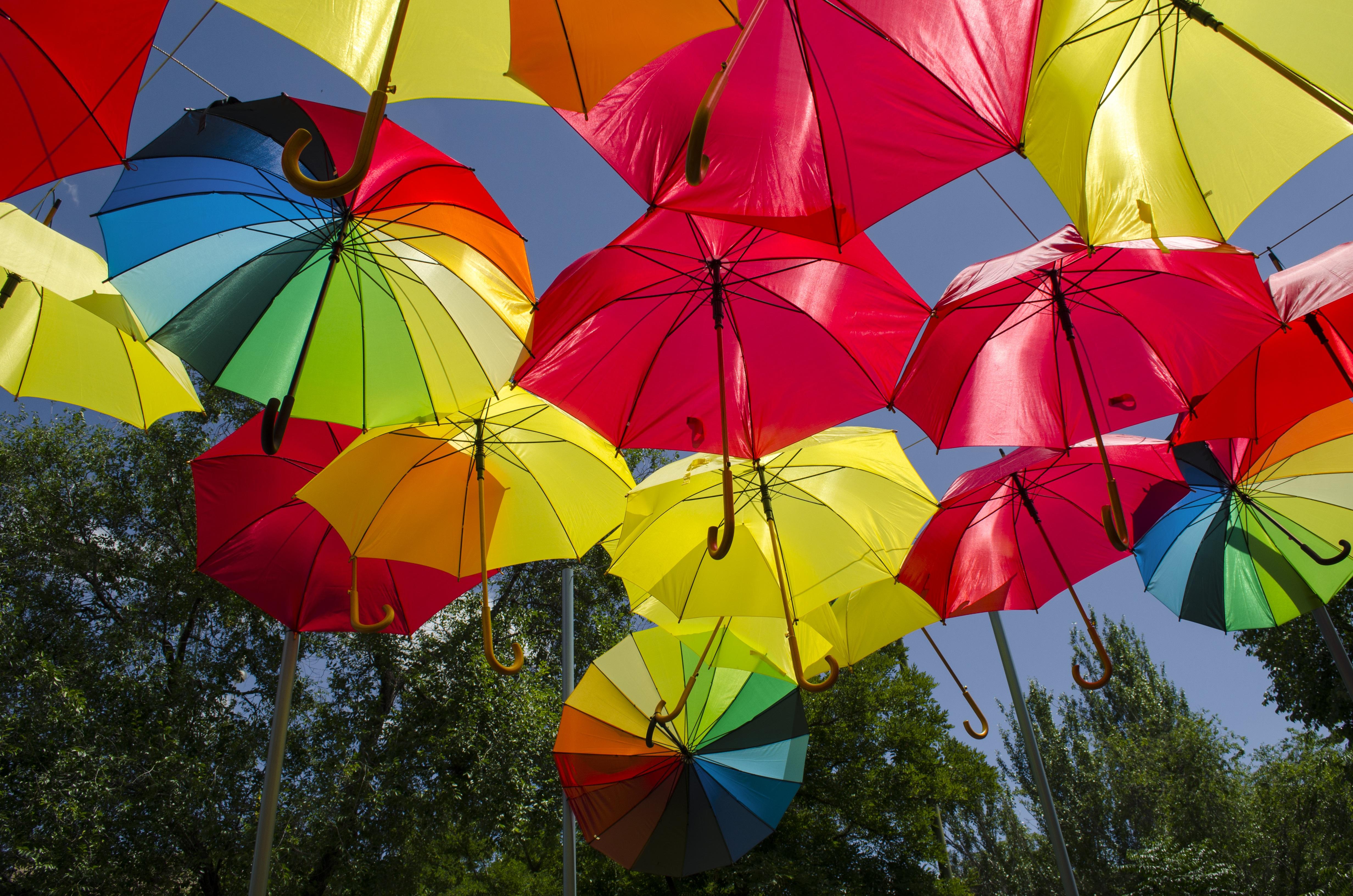 картинки яркого зонтика достаточно плотную фактурную