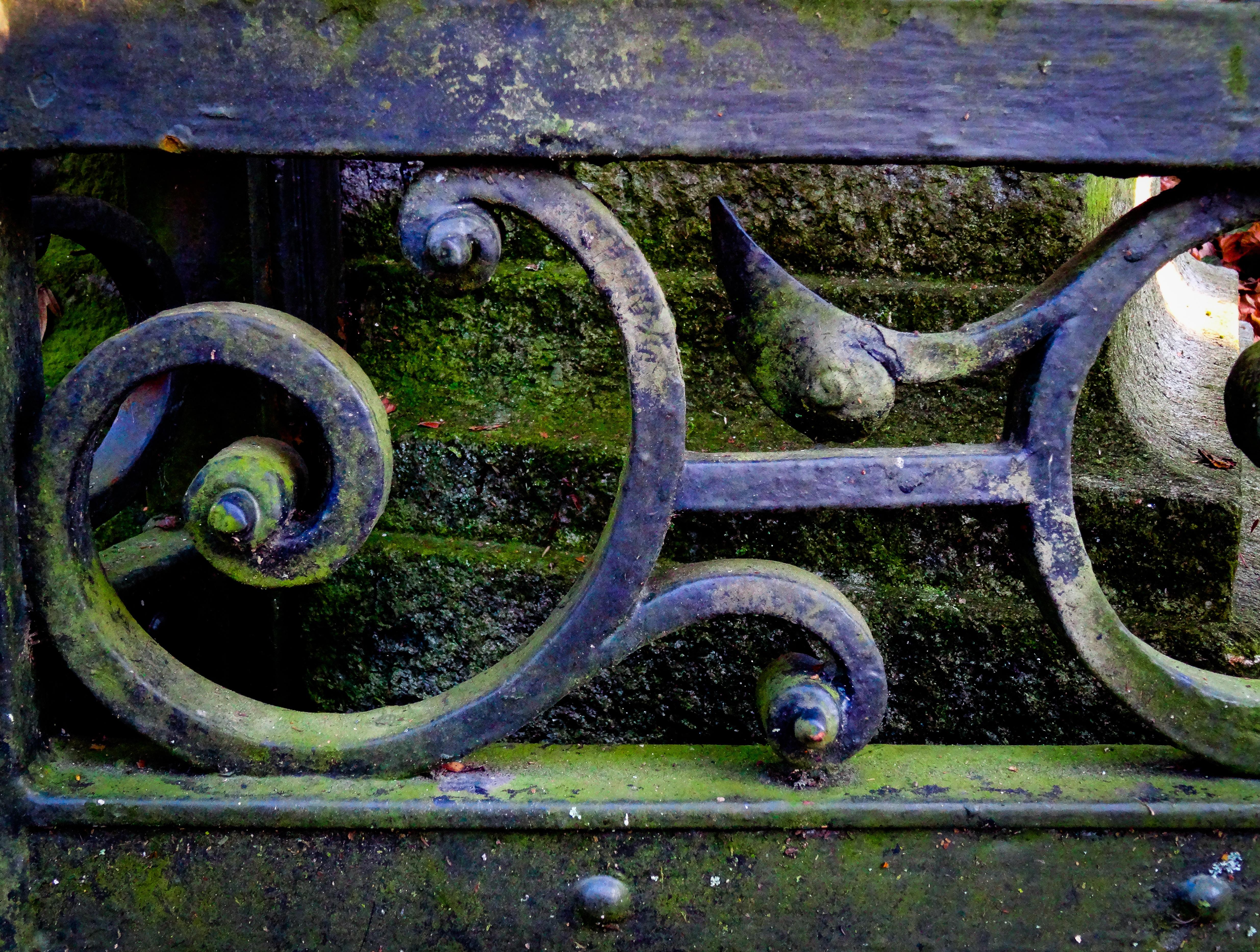 Fotos gratis rueda musgo verde veh culo azul jard n - Cercas de hierro ...