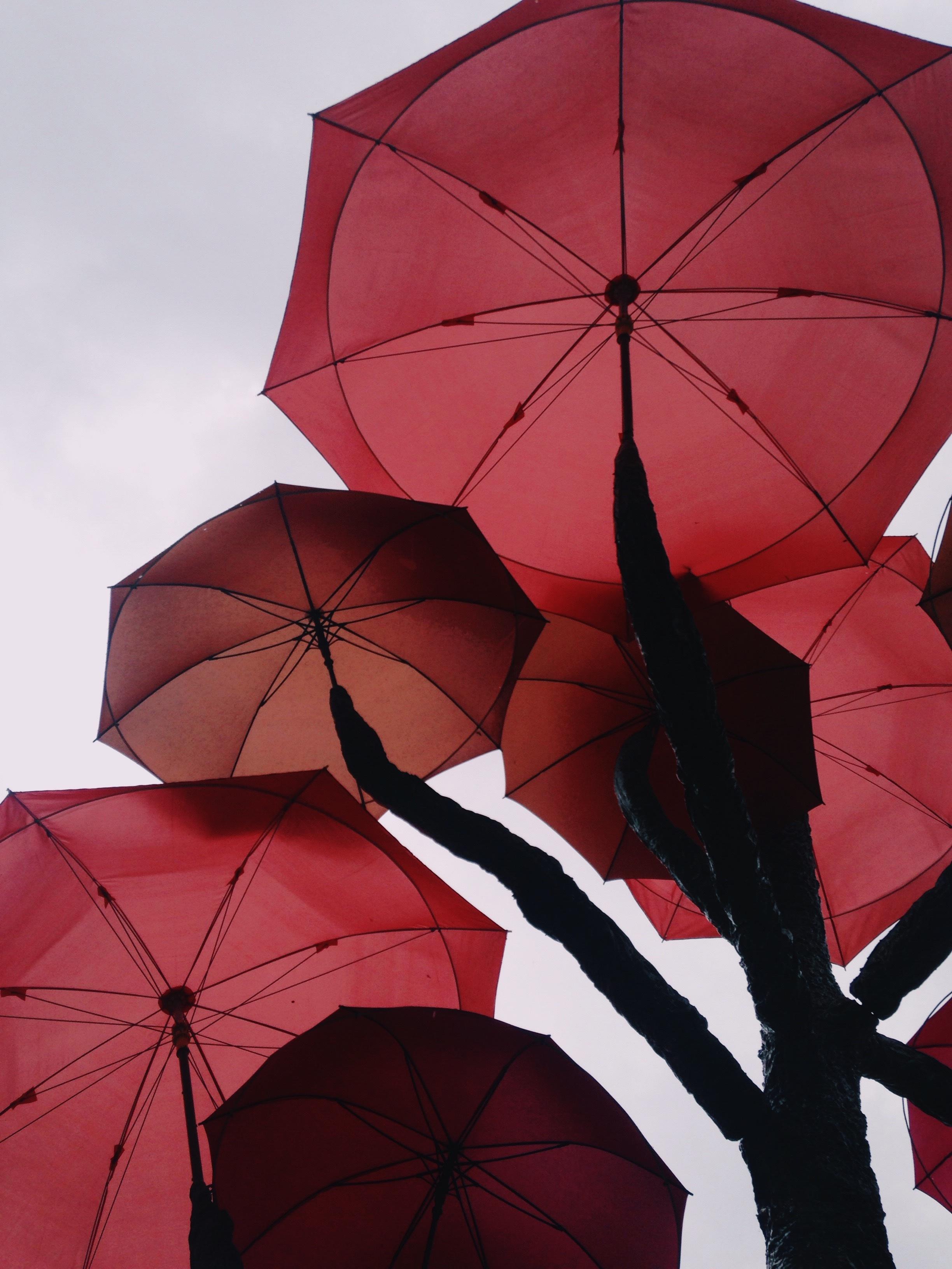 Фото с красным зонтом